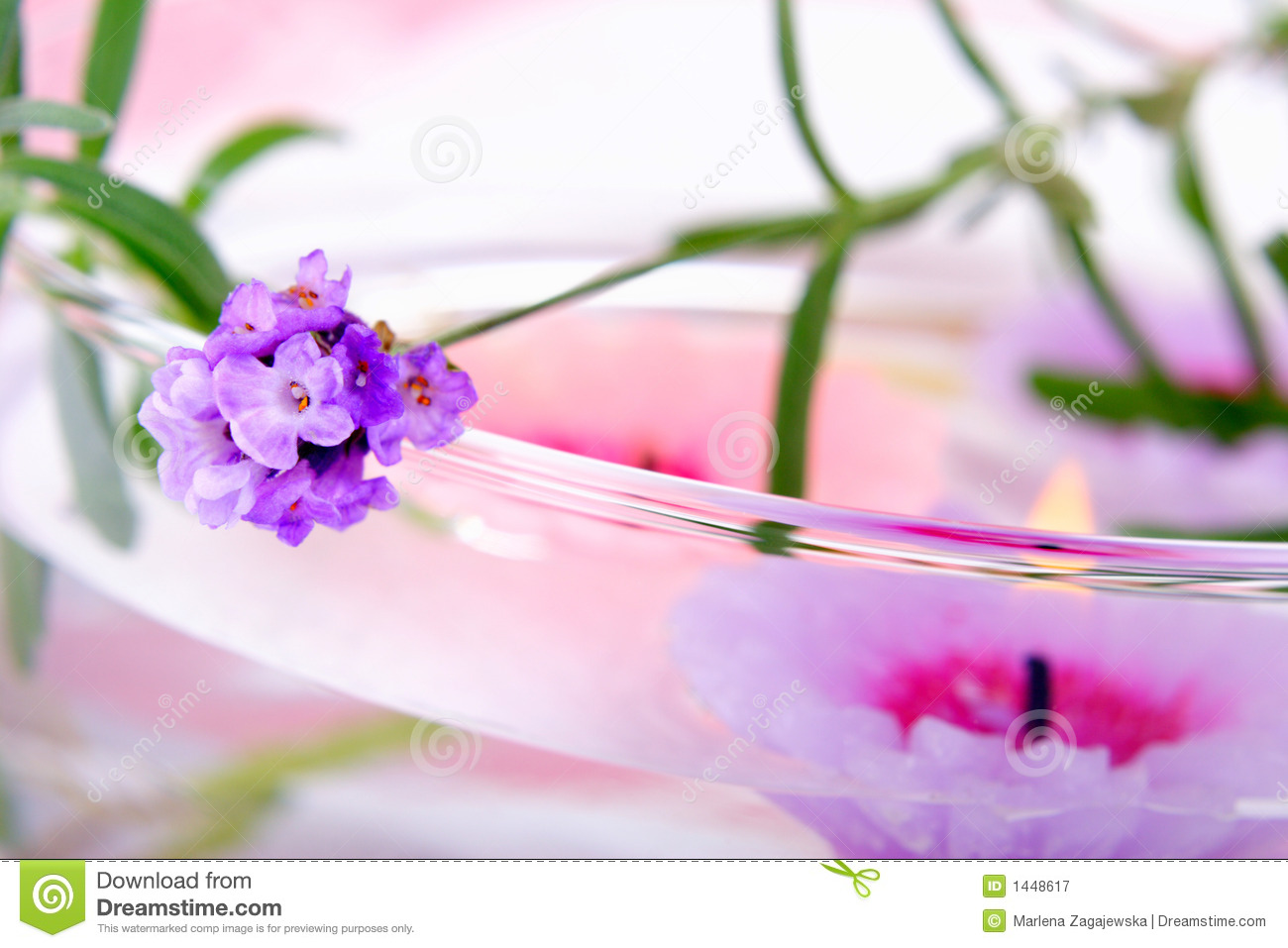 Lavender Spa Royalty Free Stock Photography Image 1448617