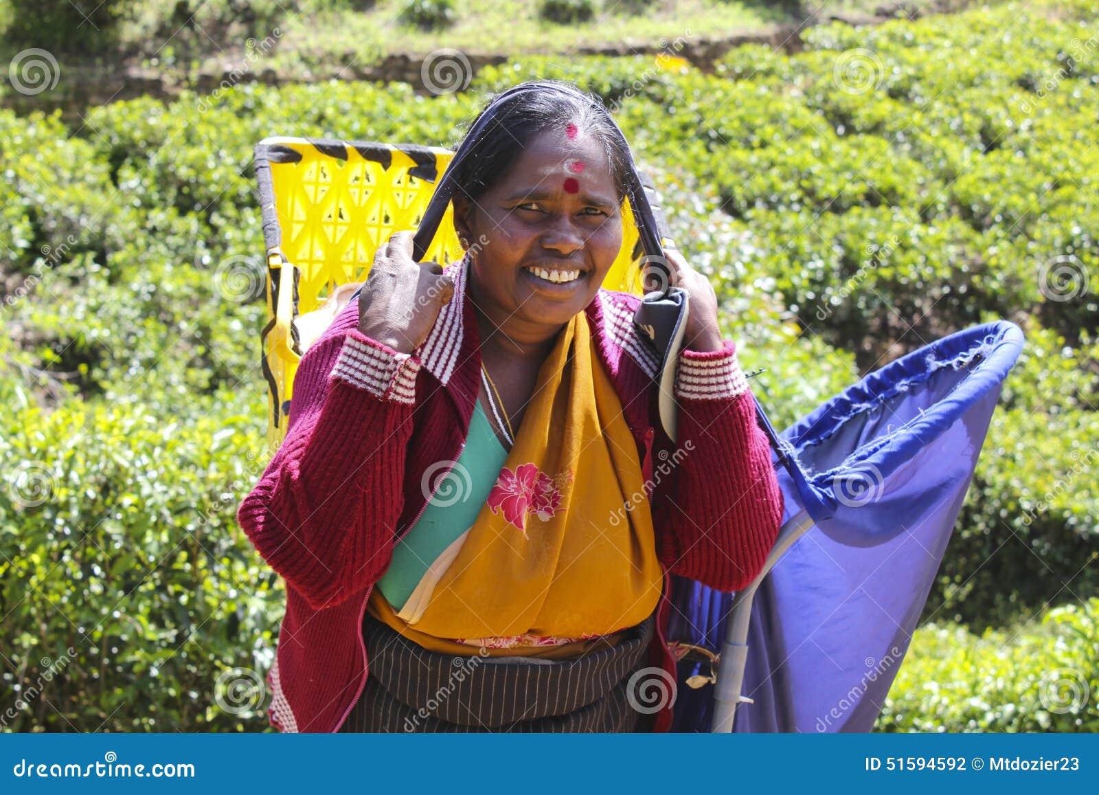 Lavoratore femminile della piantagione di tè, Sri Lanka