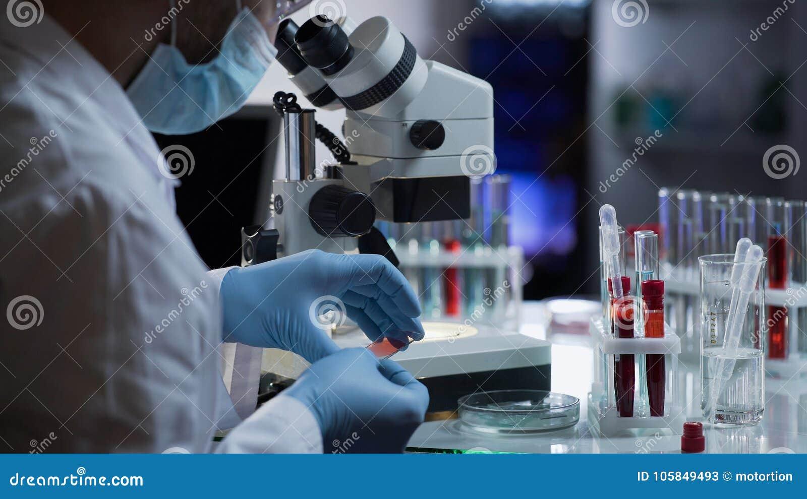 Lavoratore medico che fa l analisi del sangue per rilevazione degli anticorpi e delle infezioni