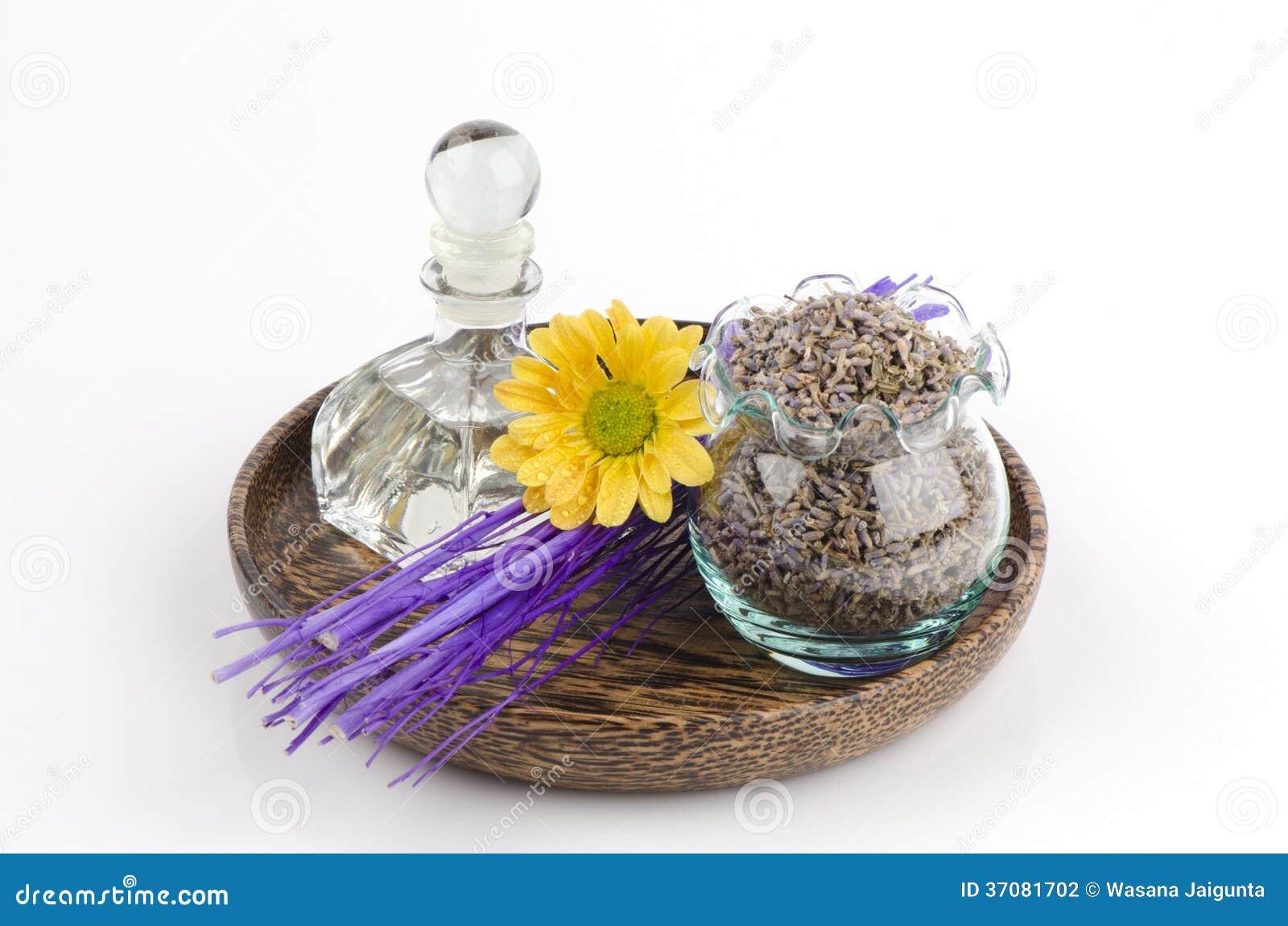Download Lawenda (Lavandula Angustifolia (Zjednoczone Królestwo). Zdjęcie Stock - Obraz złożonej z aromaty, krew: 37081702