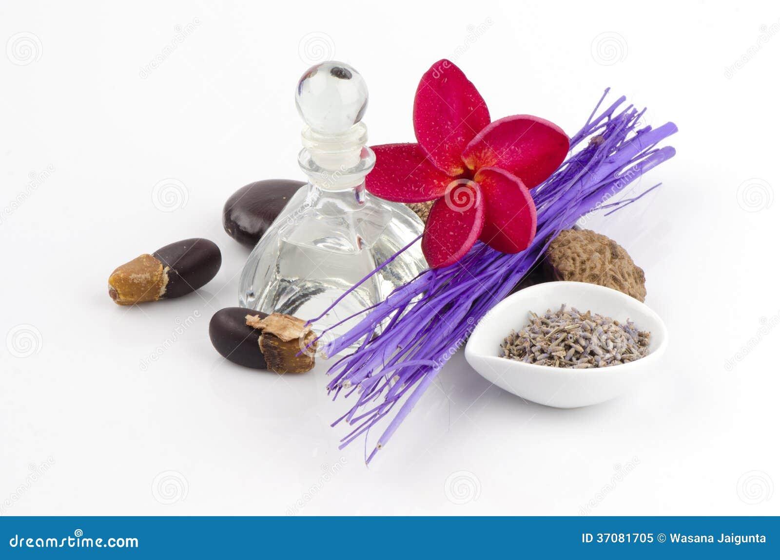 Download Lawenda (Lavandula Angustifolia (Zjednoczone Królestwo). Obraz Stock - Obraz złożonej z astma, stres: 37081705