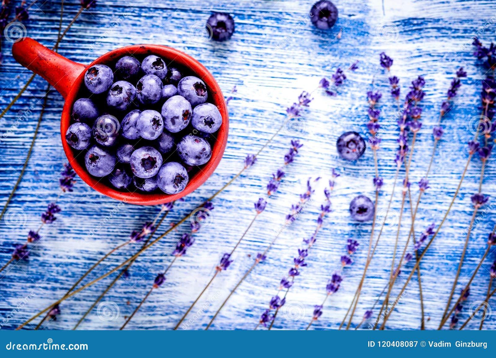 Lawendowi kwiaty z czarnej jagody filiżanki egzaminem próbnym up na błękitnym tle t