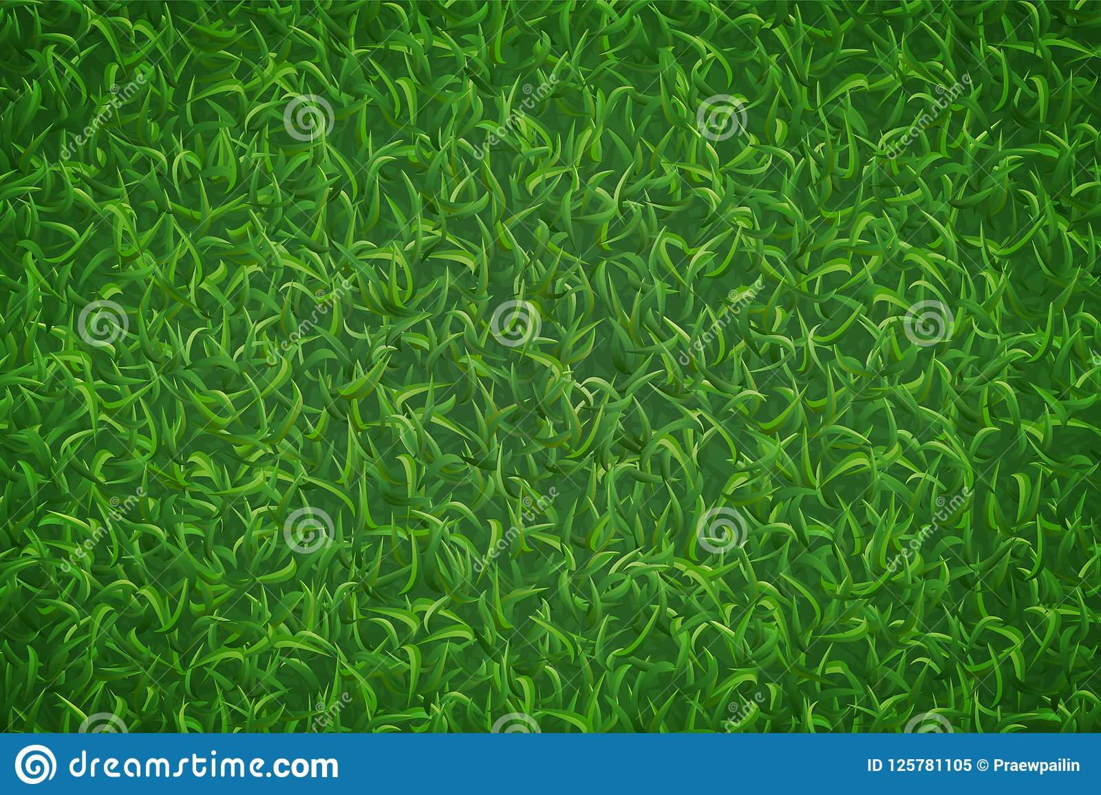 Lawn grass pattern and texture for background. Vector.