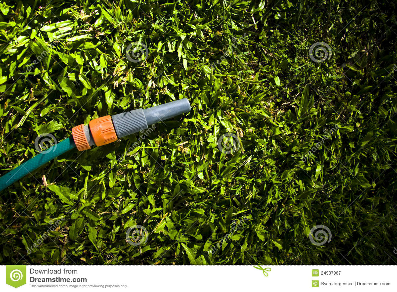 Lawn maintenance and garden care royalty free stock for Garden care maintenance