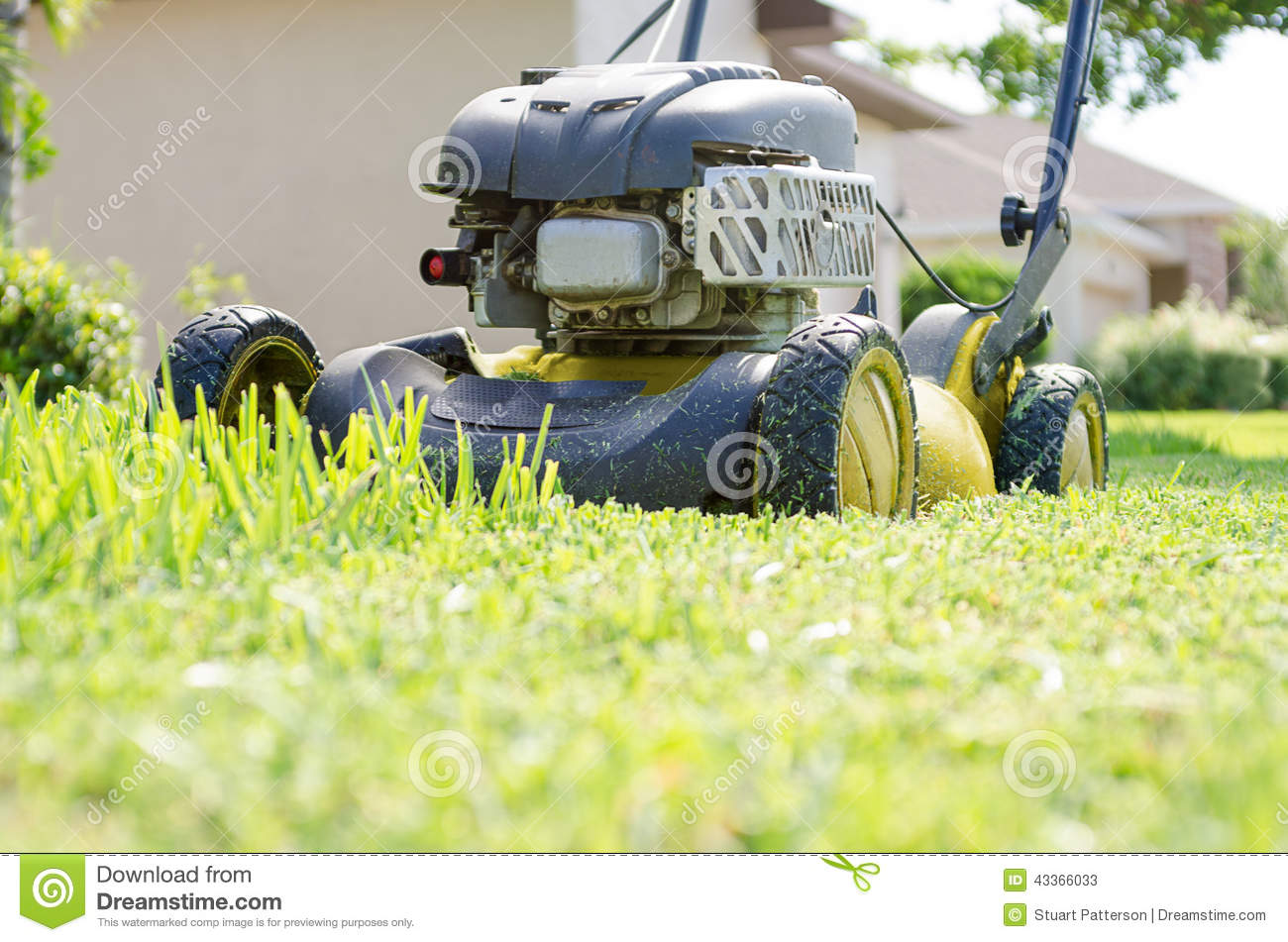 A lawn mower cutting grass stock image image of push for Lawn mower cutting grass