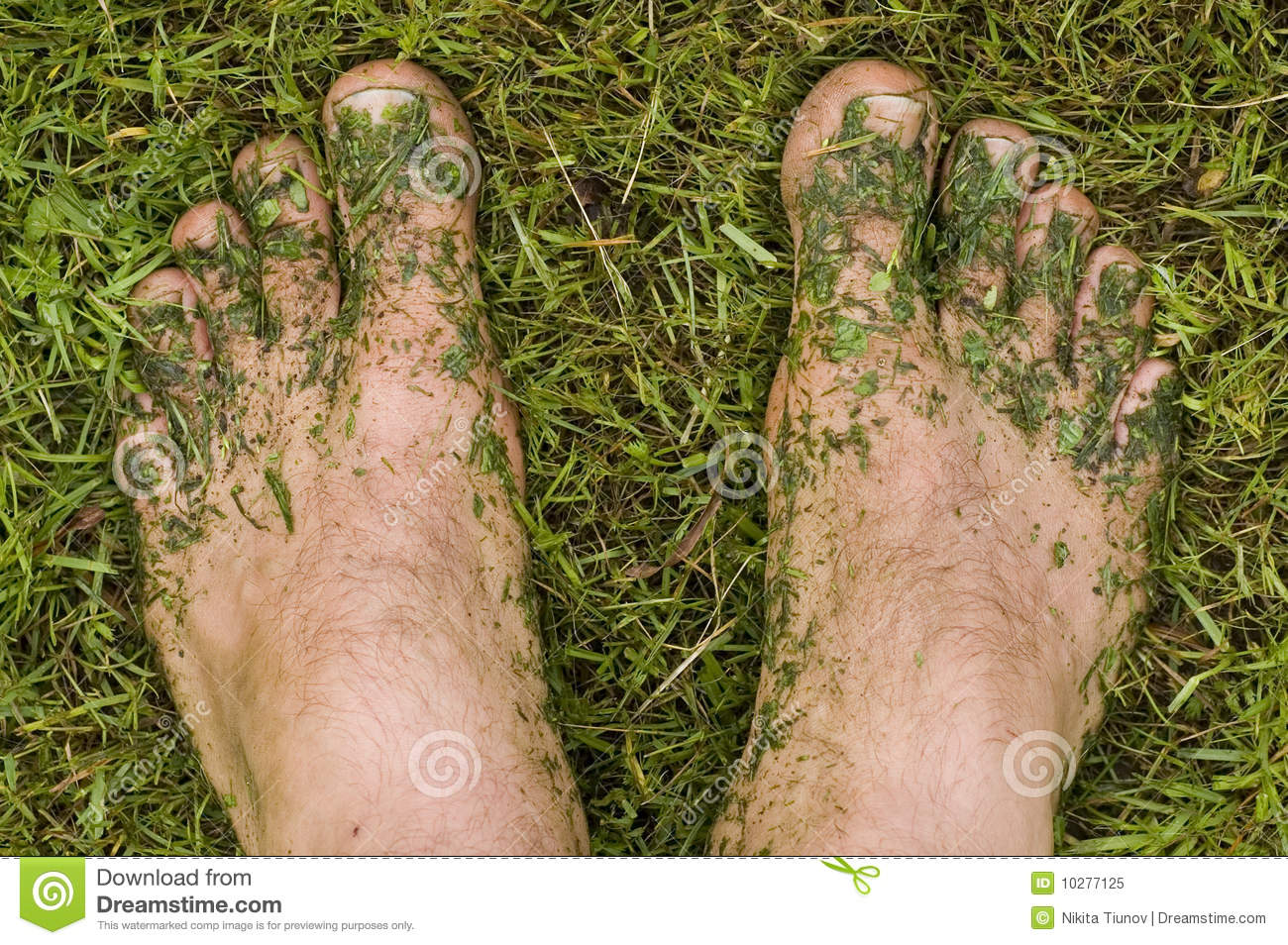 Lawn Mower Foot : Lawn mower s feet stock image of green grass