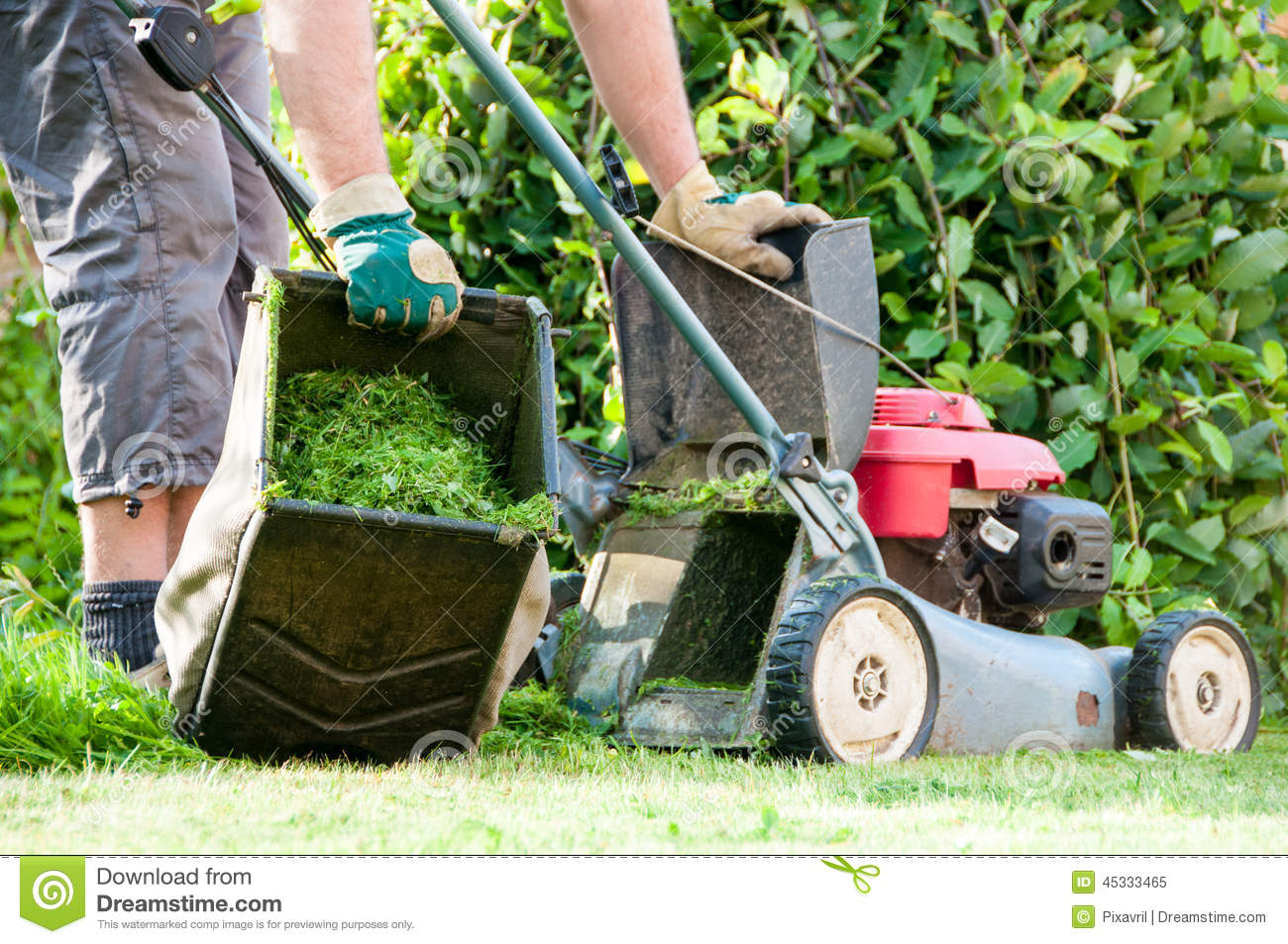 Lawn Mowing Stock Photo Image 45333465