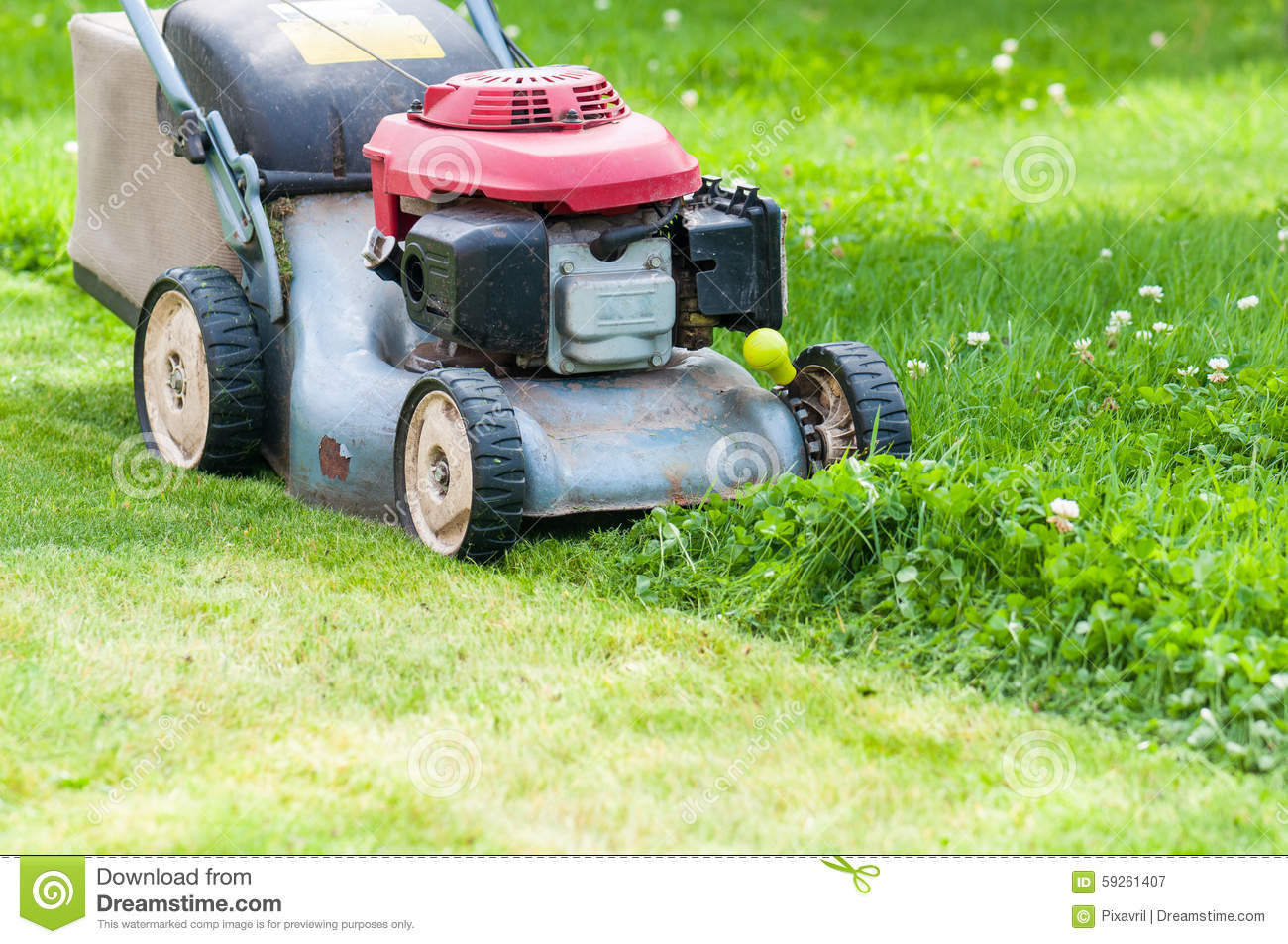 Lawn Mowing Stock Photo Image 59261407