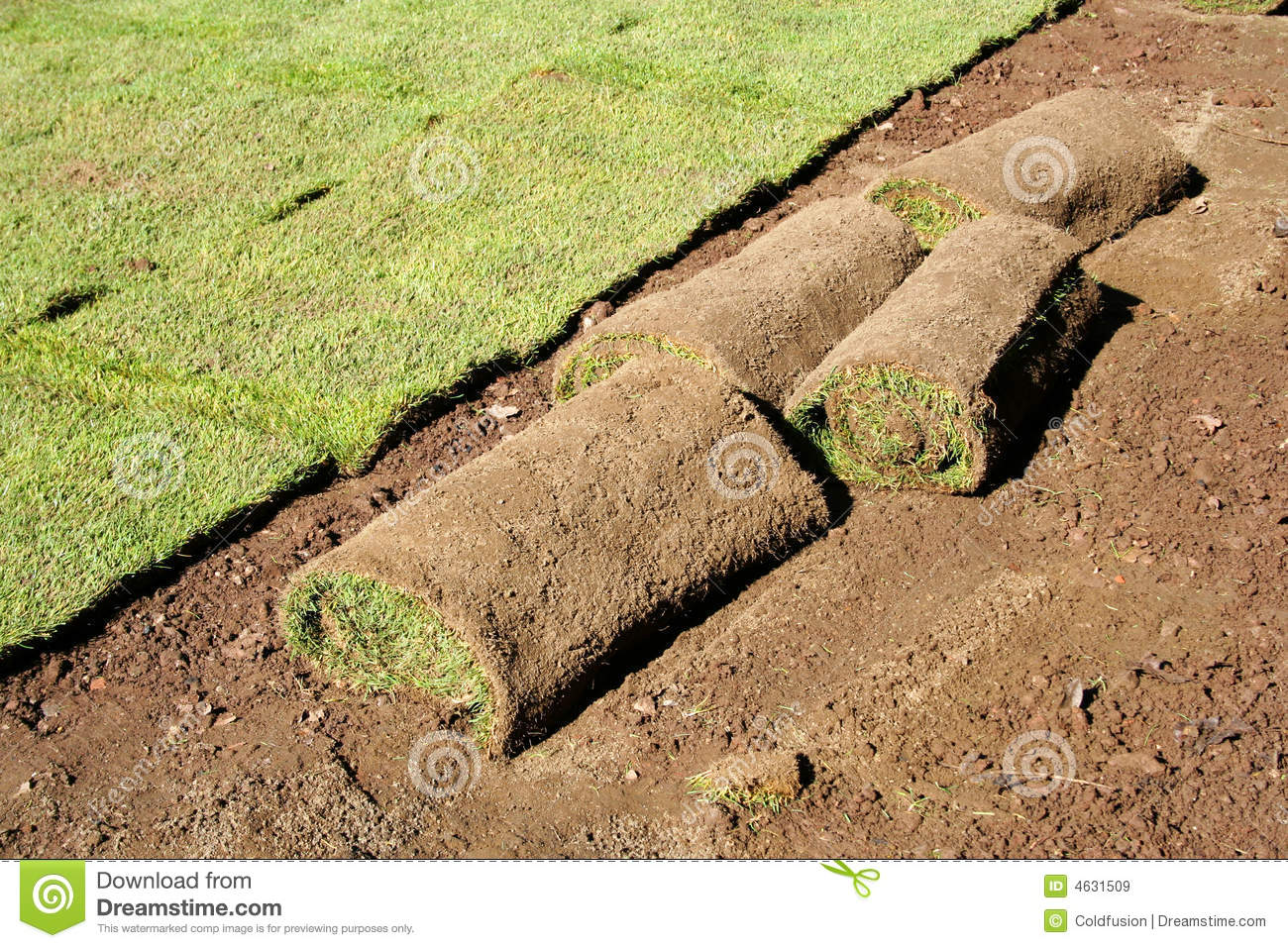 Landscaping Grass Roll : Lawn in the rolls royalty free stock images image