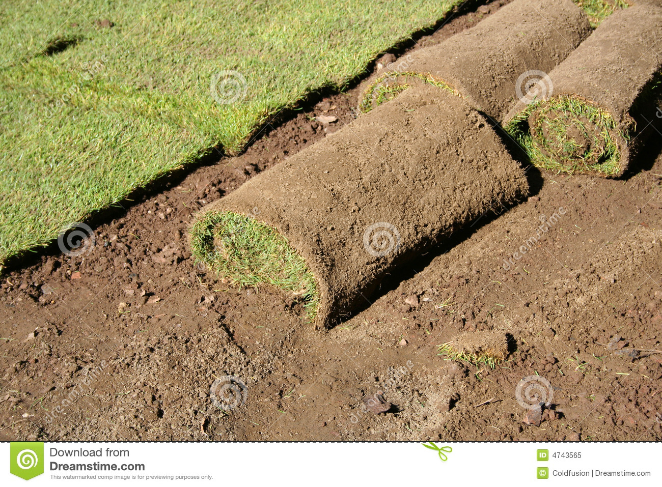 Landscaping Grass Roll : Lawn in the rolls royalty free stock photo image