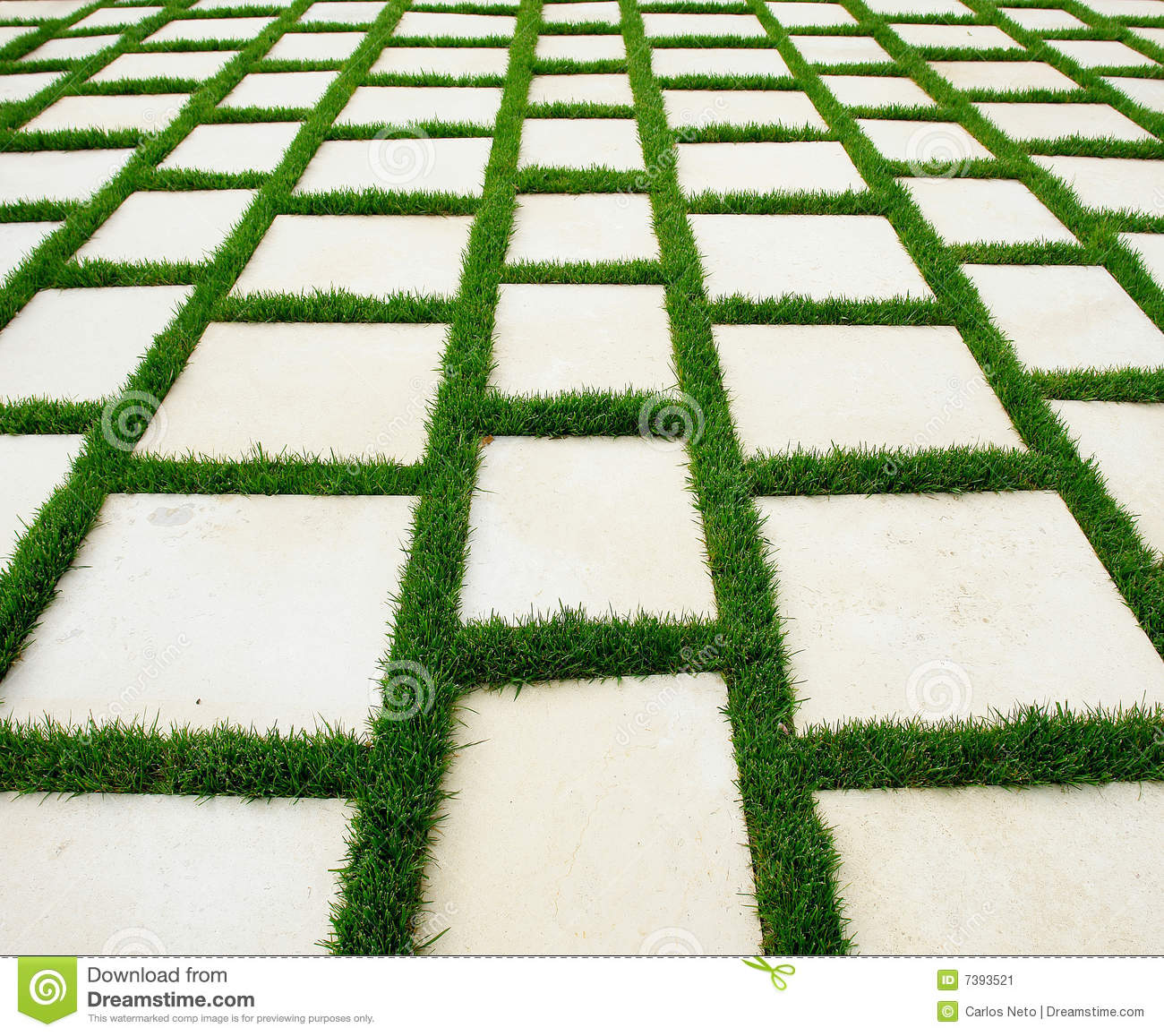 Lawn and rustic paving texture stock image image 7393521 for Green pavers