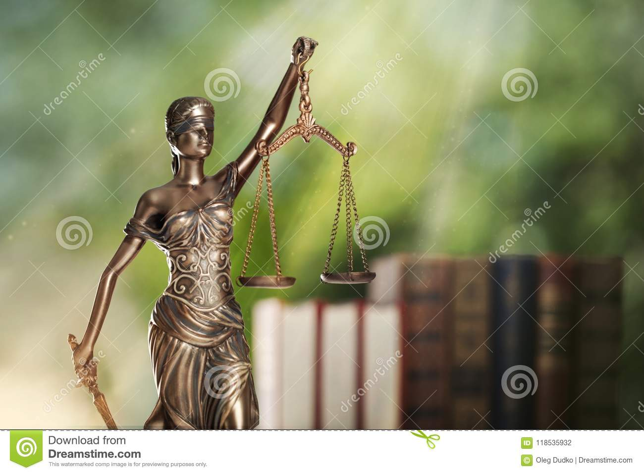 Lawyer Office Justice Attorney Law Bookshelf Legal