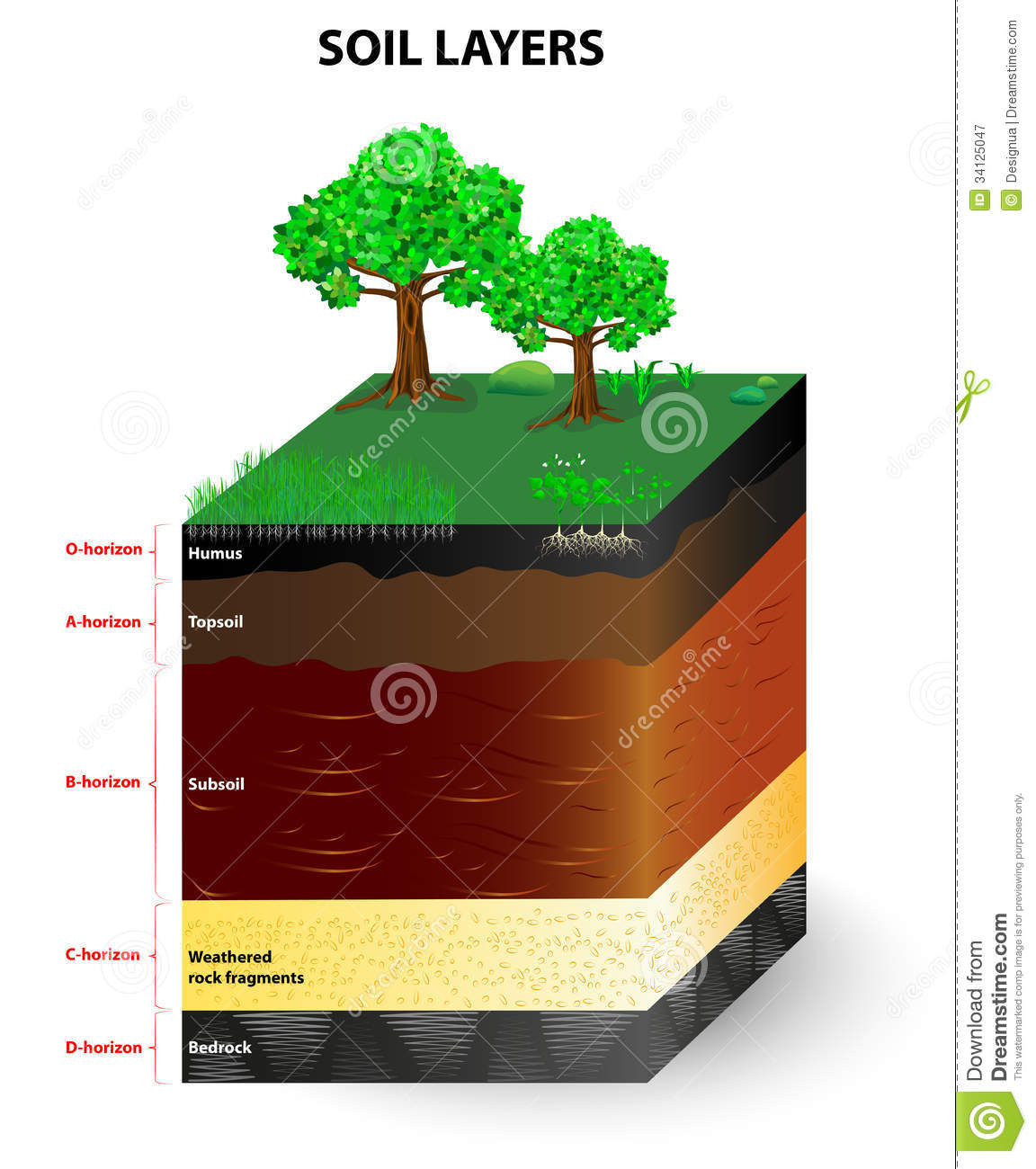 The gallery for soil profile horizons for Soil profile video