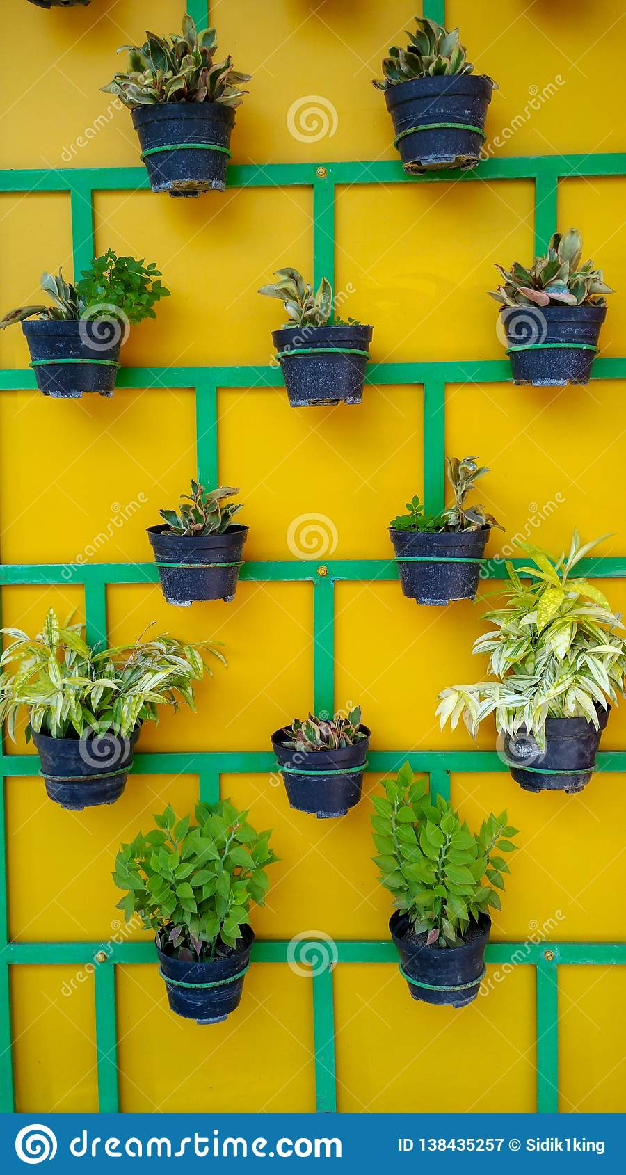 Layout for plant pots on the wall