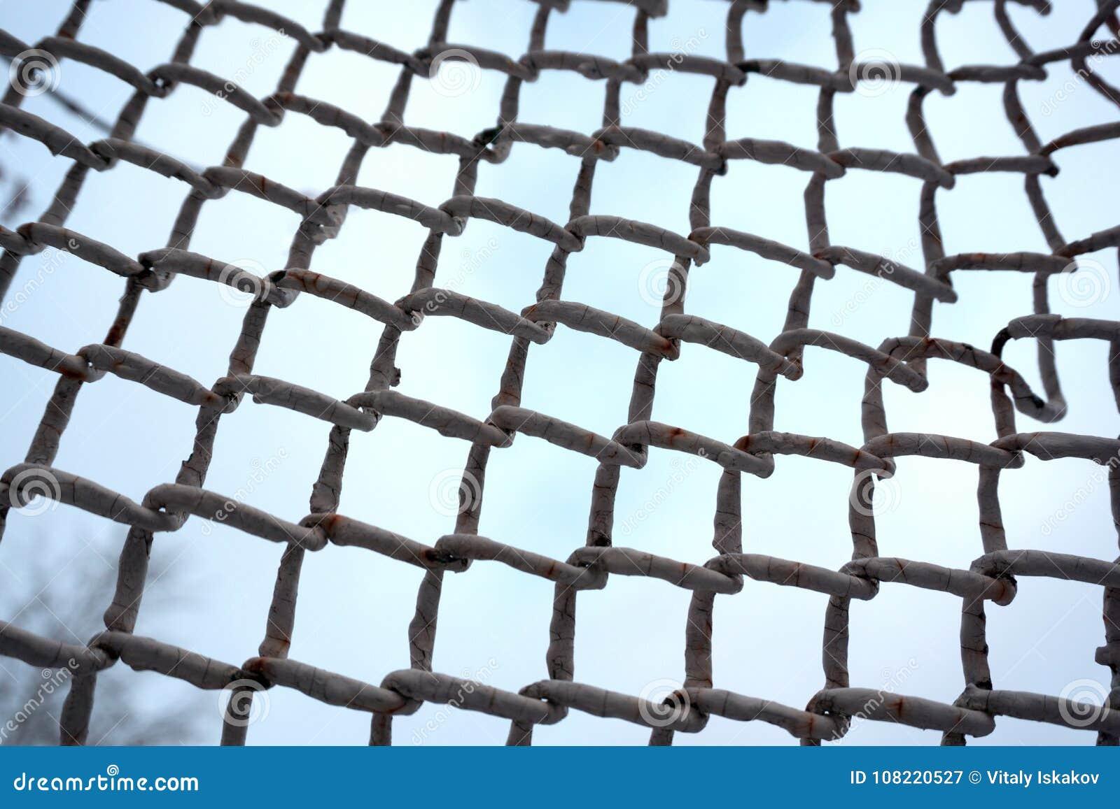 Lazo de entidades Establecimiento de una red, medio social, SNS, extracto de la comunicación de Internet Pequeña red conectada co