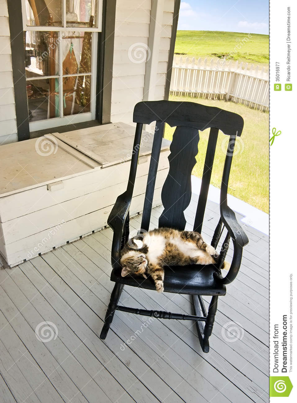 Lazy Summer Country Cat On Back Porch Rocking Chair