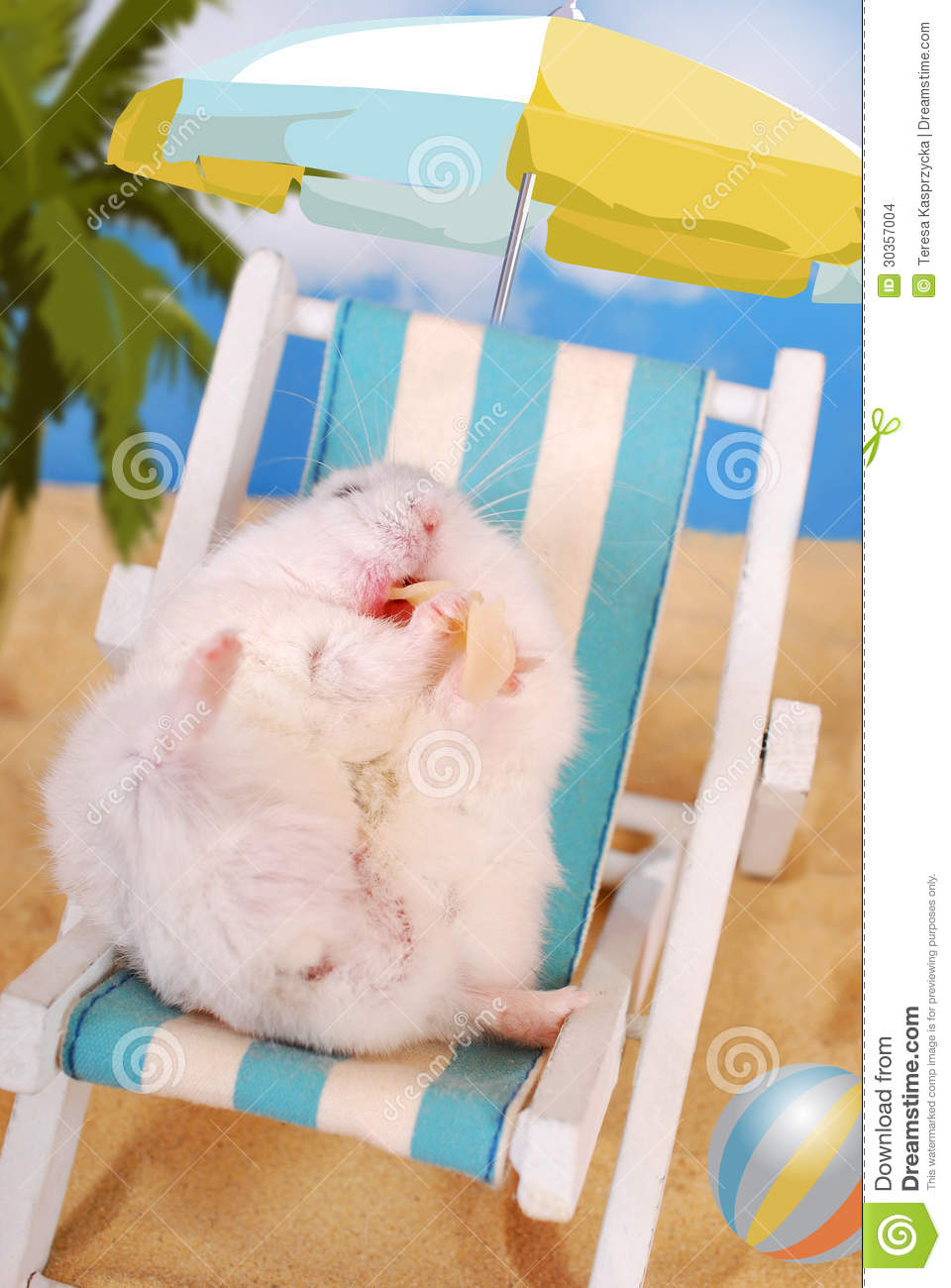 Beach Sand Chair Lazy Summer Holidays Stock Images - Image: 30357004