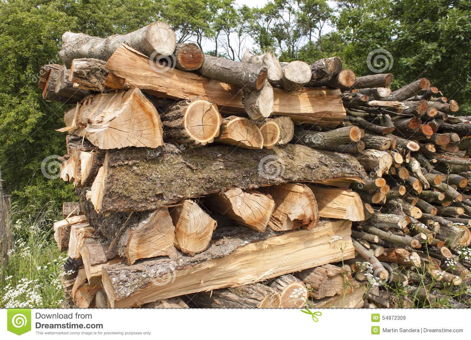 Le a tajada para el invierno la madera del rbol de - Casas de madera en arboles ...