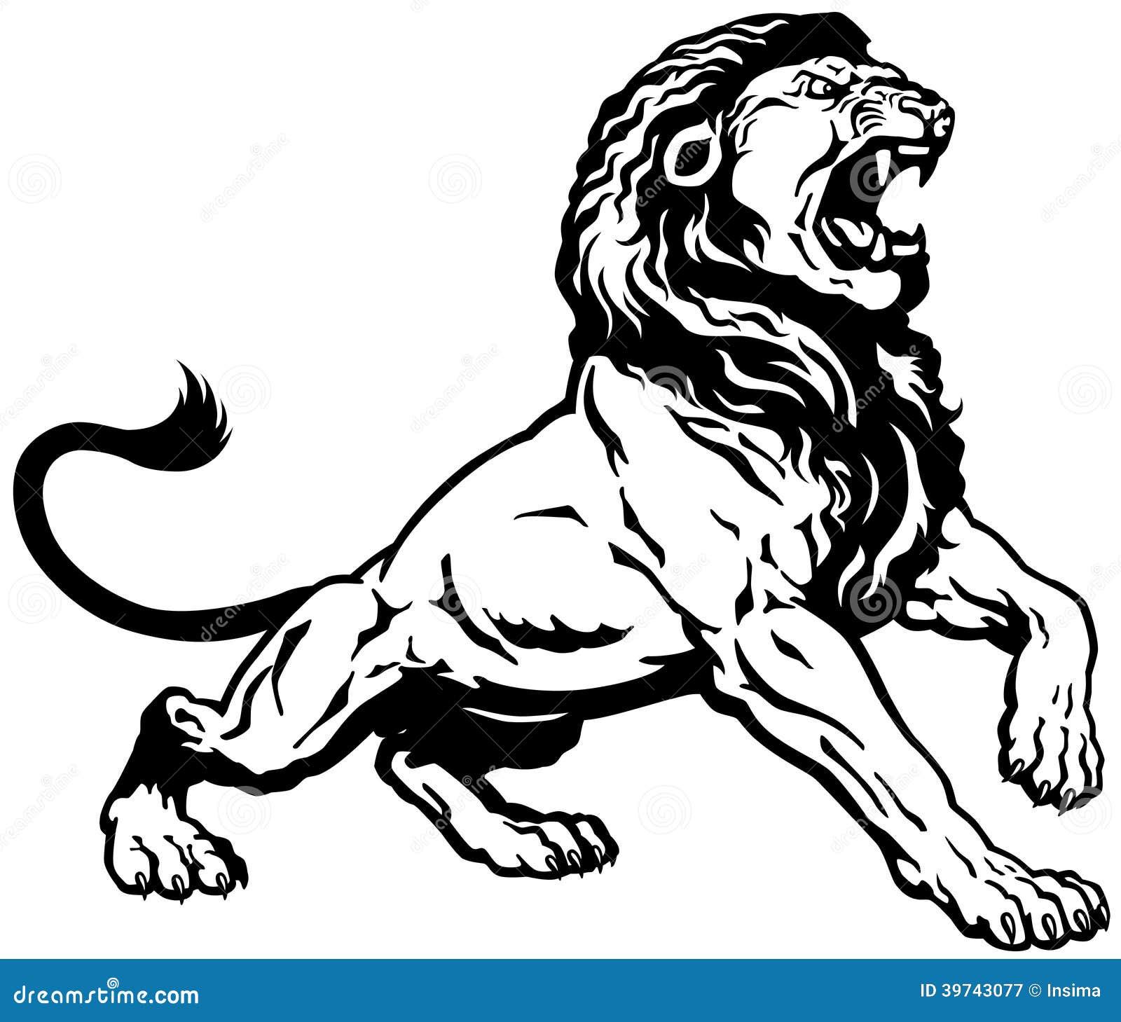León enojado
