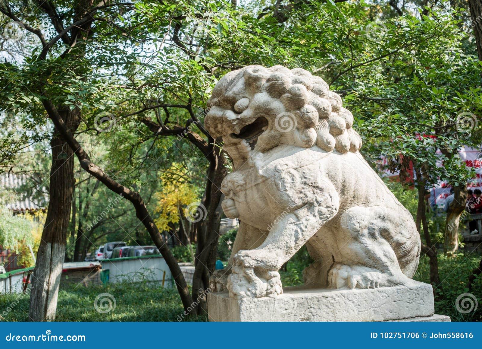 Leões da pedra de China