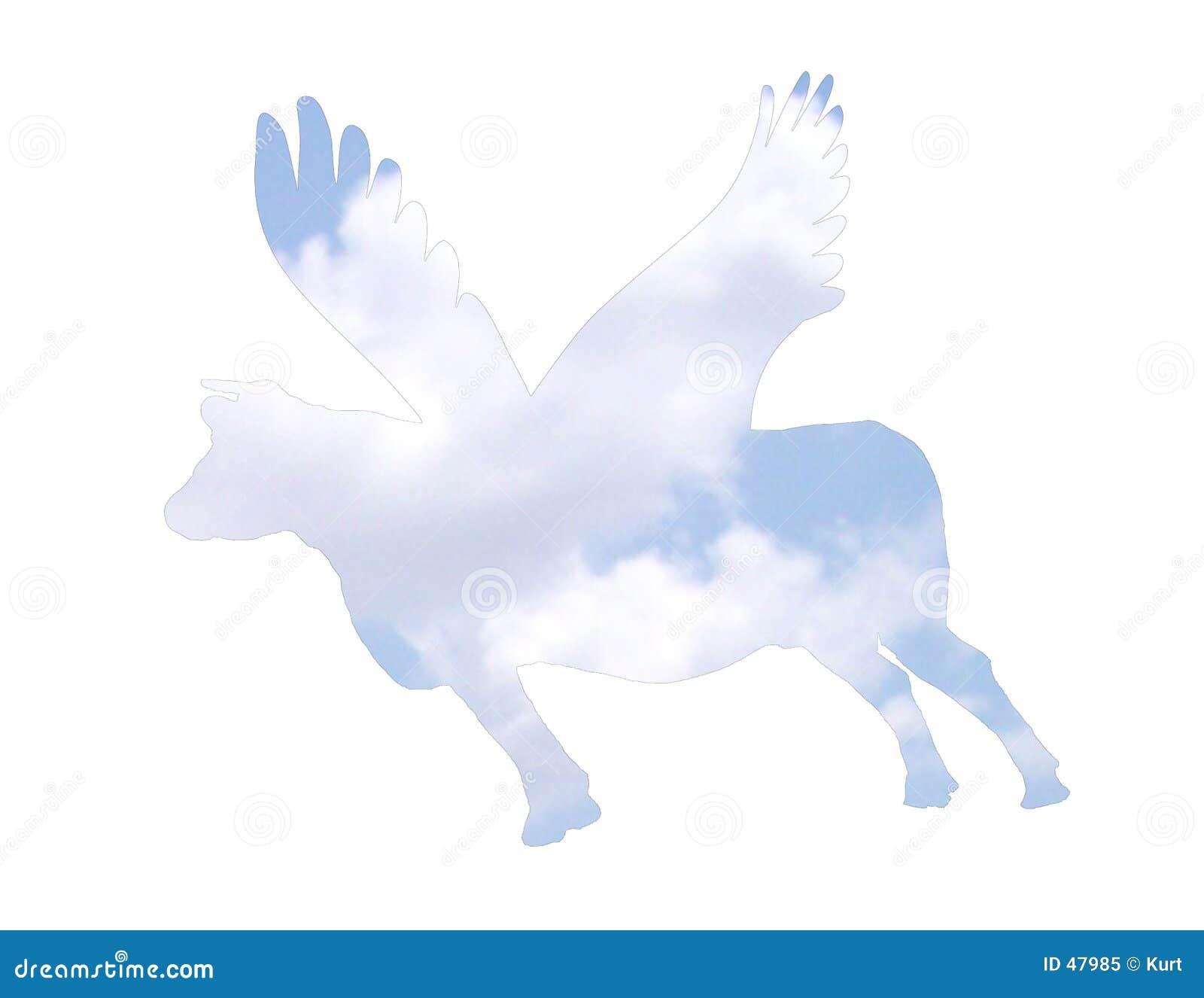 Leć krowy