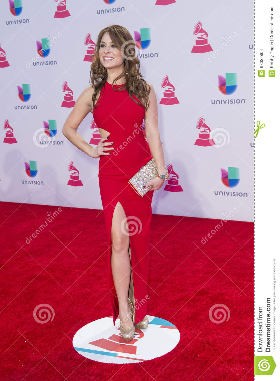 Download Le 16ème Grammy Awards Latin Annuel Photo éditorial - Image du musique, récompenses: 63082806