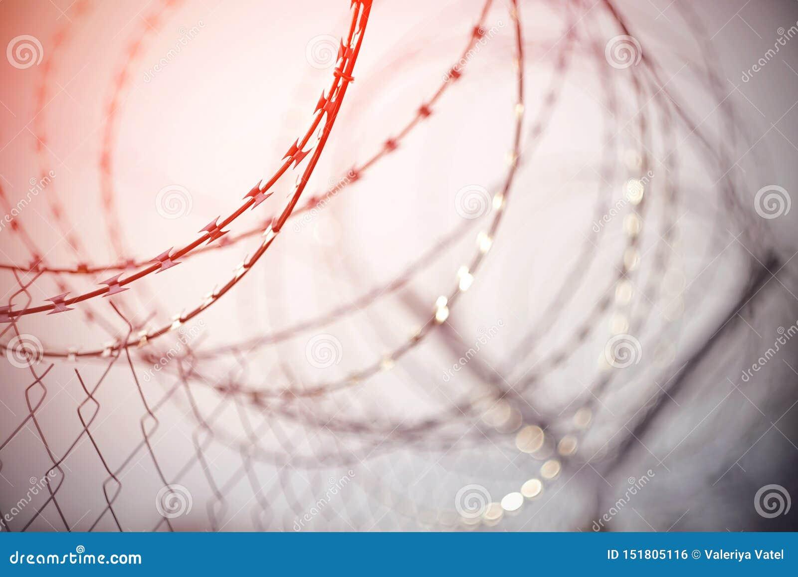 Le barbelé en métal, tordu dans une spirale sur la barrière de maille, a accentué en rouge