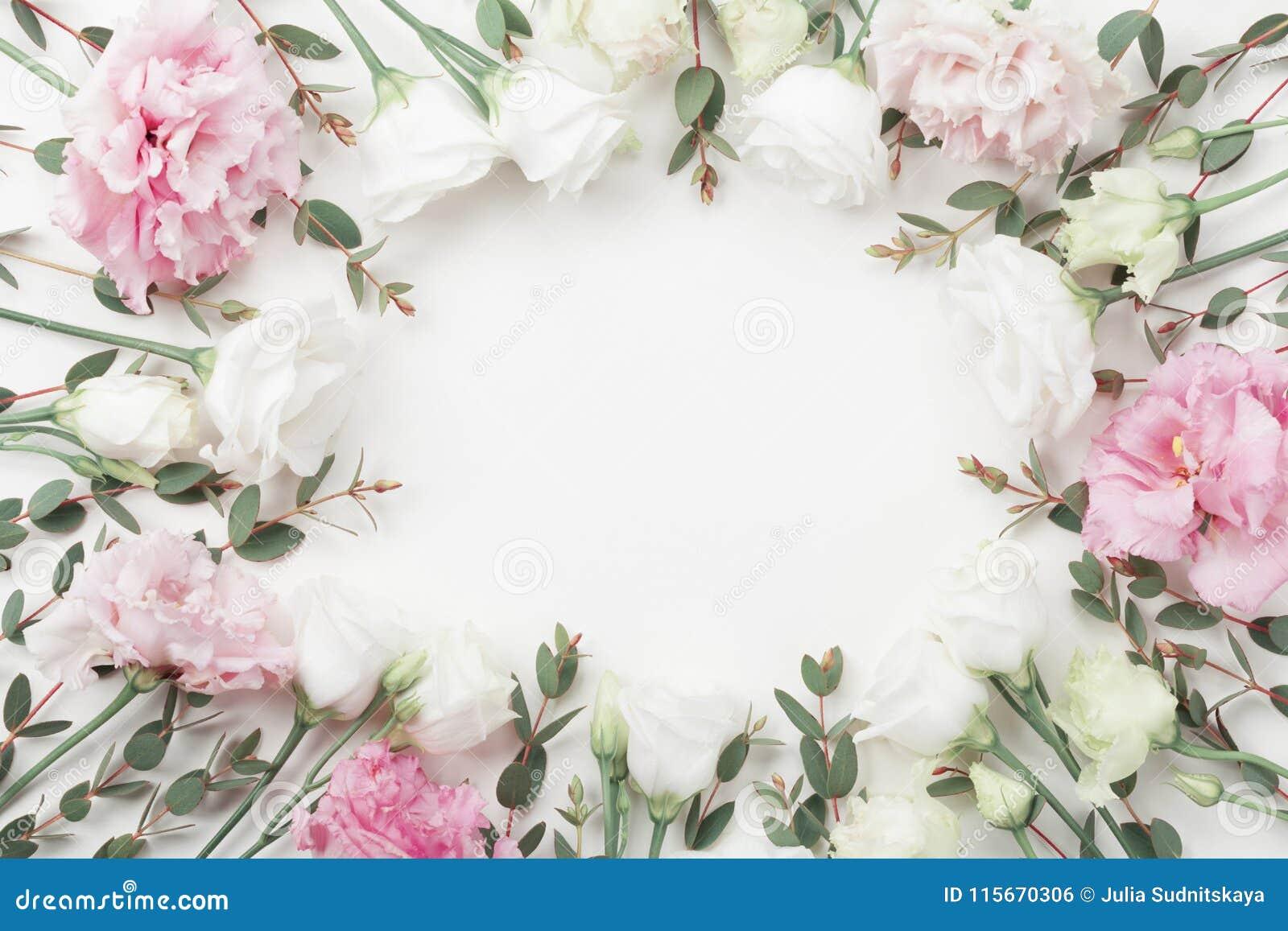 Le beau cadre floral des fleurs et de l eucalyptus en pastel part sur la vue supérieure blanche de table style plat de configurat