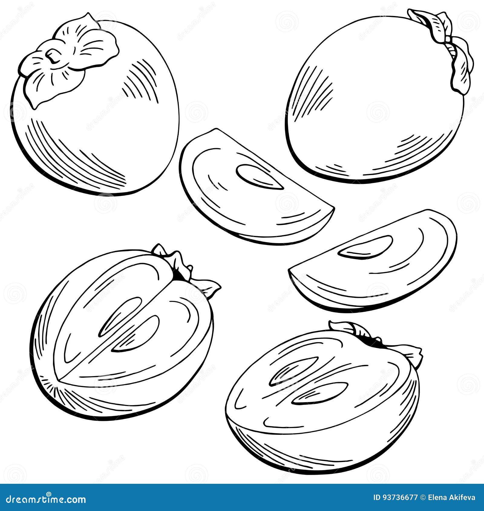 Coloriage Fruit Kaki.Le Blanc Noir Graphique De Fruit De Kaki A Isole L Illustration De