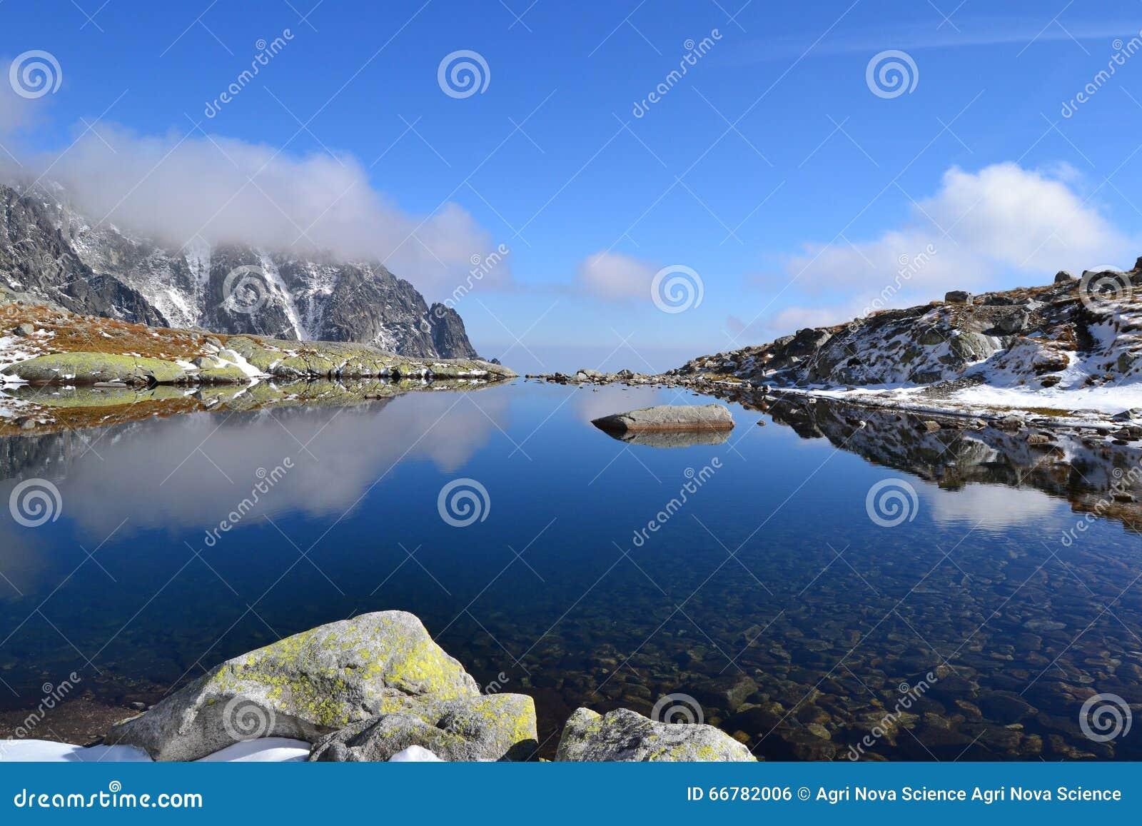 Le bois de parc de vert de ciel bleu de nature de montagne opacifie le réflexe de lac gentil