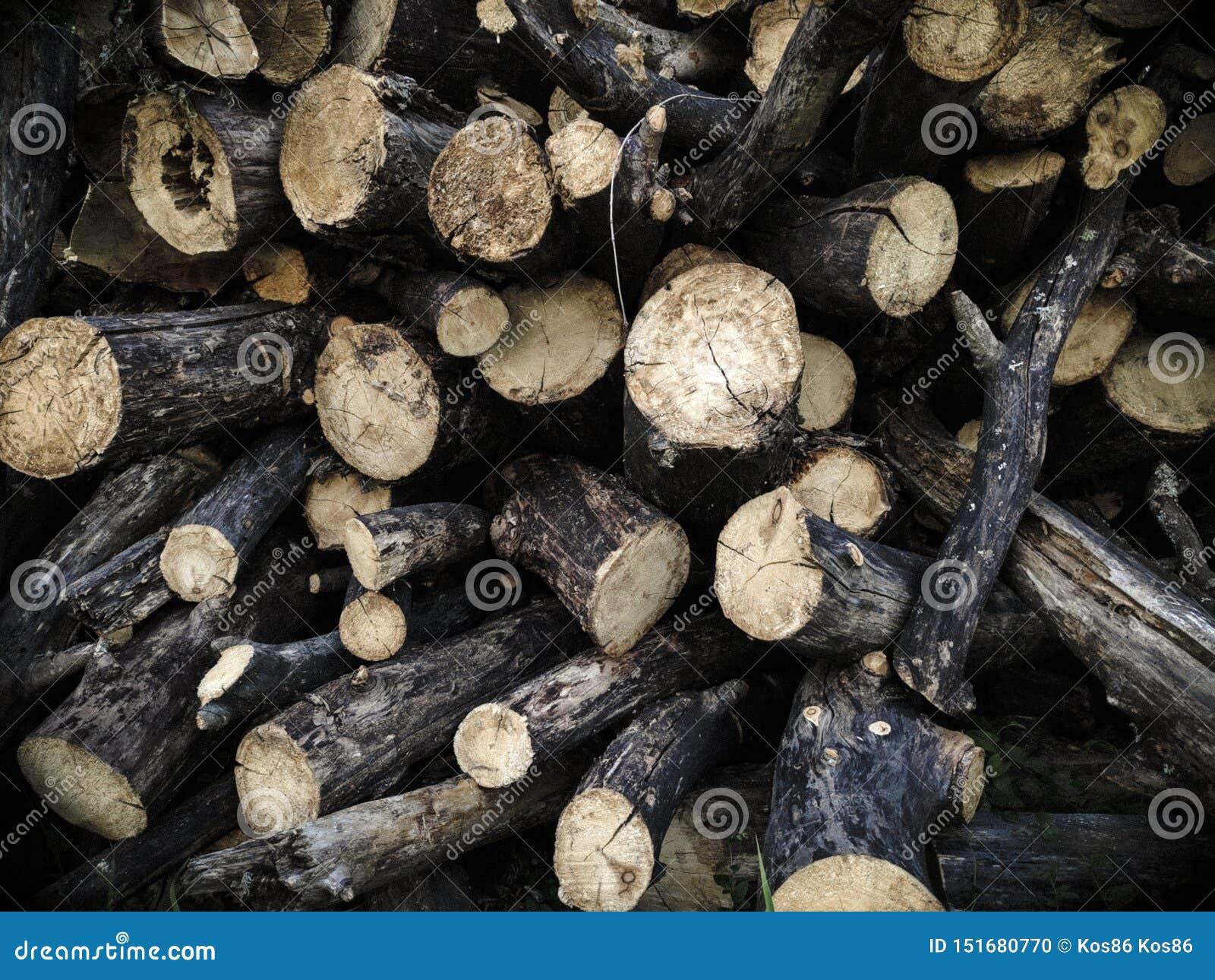 Le bois a empilé dans une pile