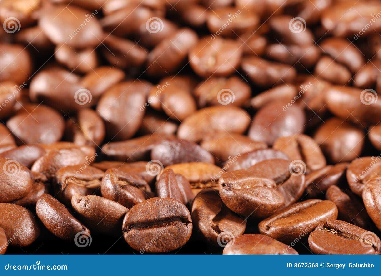 Le café a fait frire