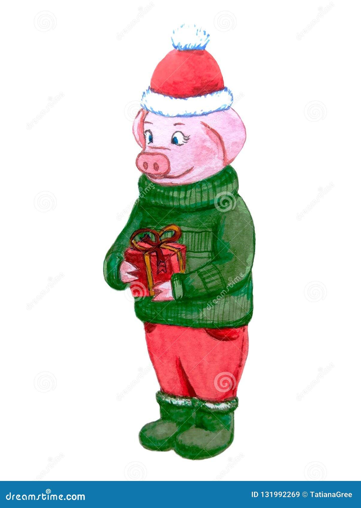 Le caractère porcin gai dans un chapeau rouge et un chandail vert tient dans des ses pattes un beau cadeau avec des rubans