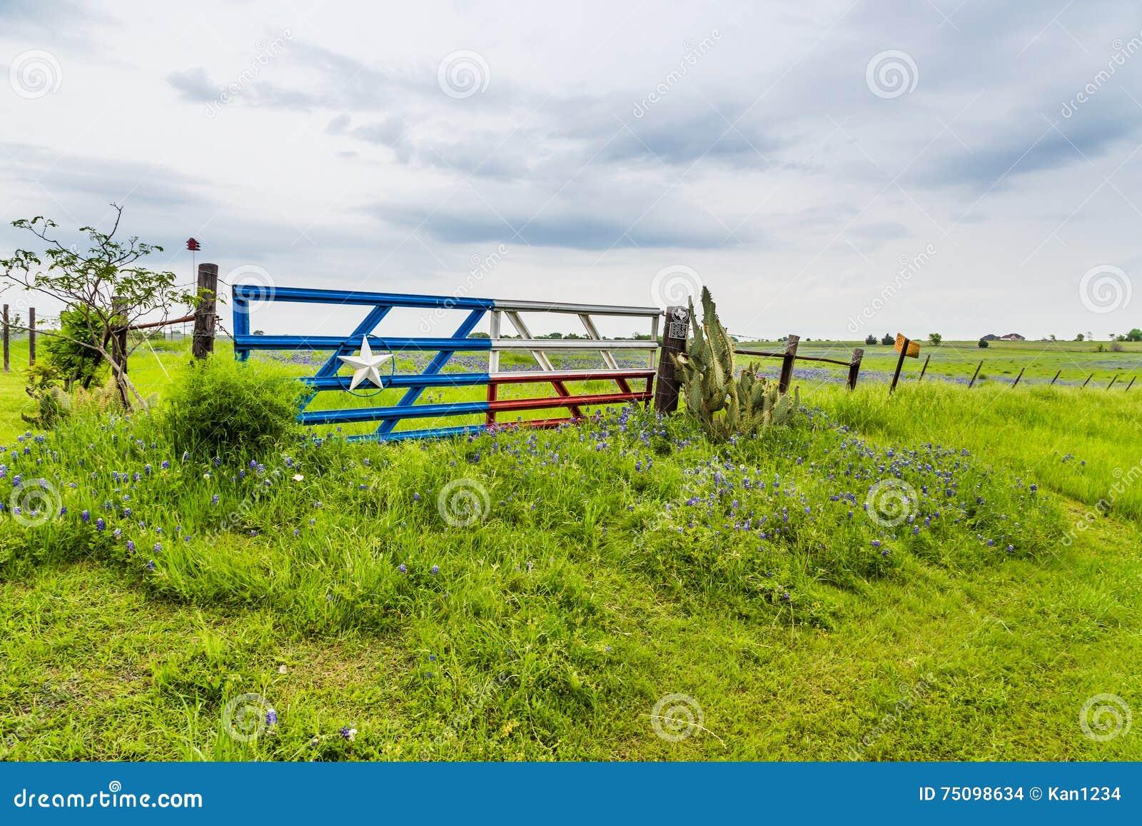 Le champ et le texas de bluebonnet marquent la porte dans for La porte in time zone