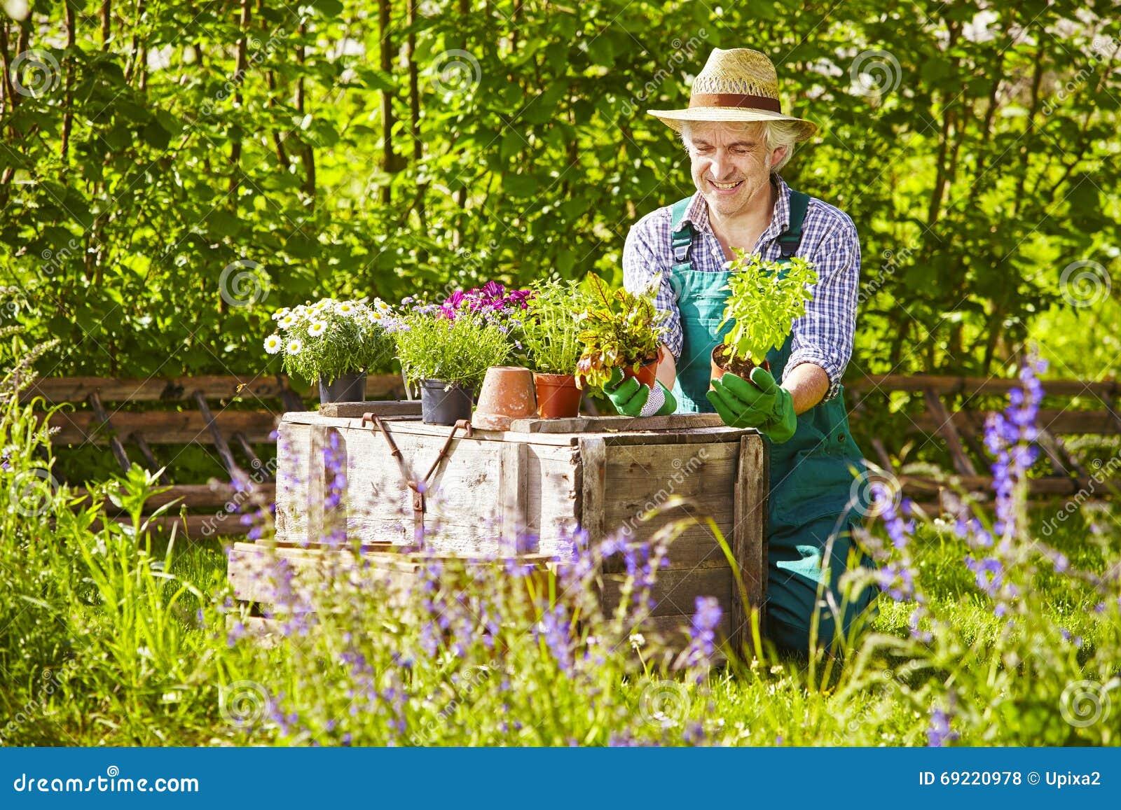 le chapeau de paille de jardinier plante le jardin photo