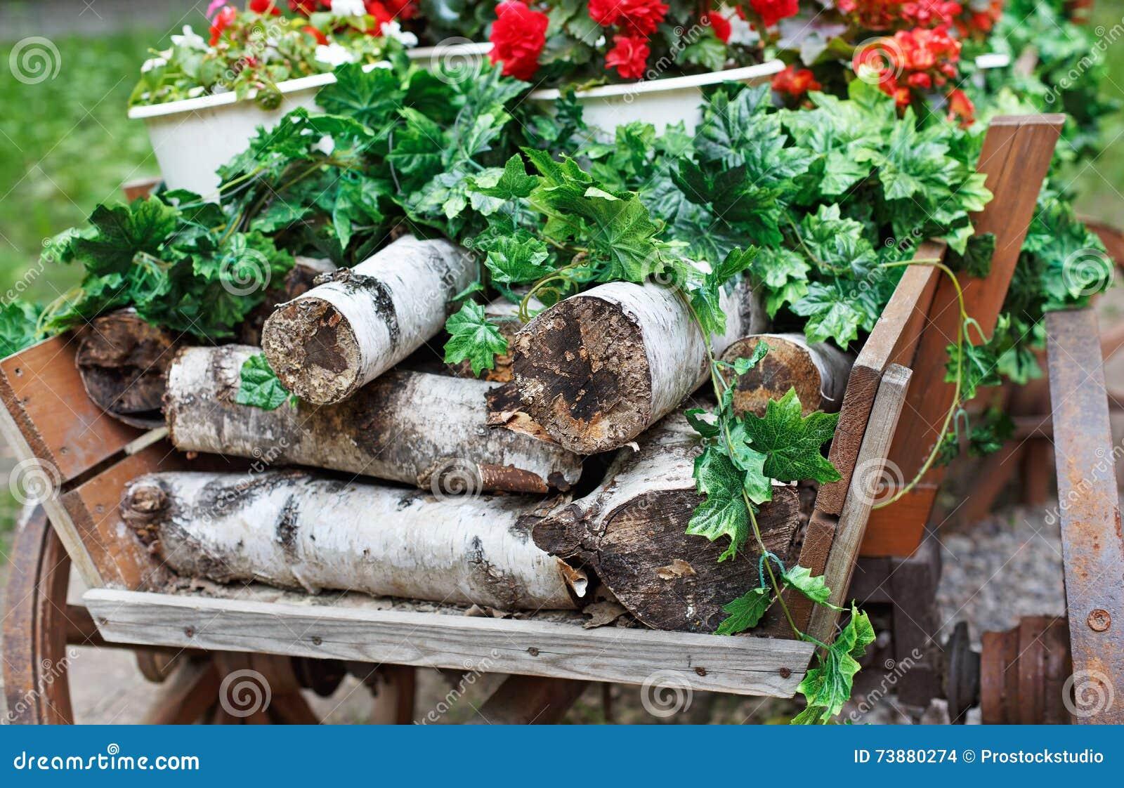 le chariot avec le bois de chauffage et les fleurs de bouleau en parc photo stock image du. Black Bedroom Furniture Sets. Home Design Ideas