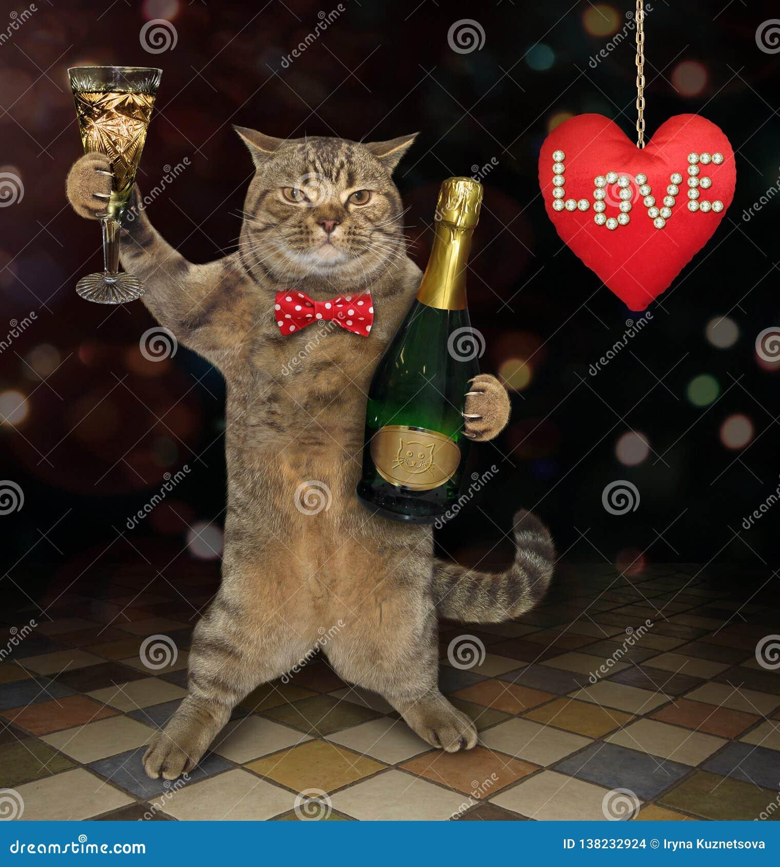 Le Chat Avec Le Verre De Vin Fait Un Pain Grillé 2 Photo