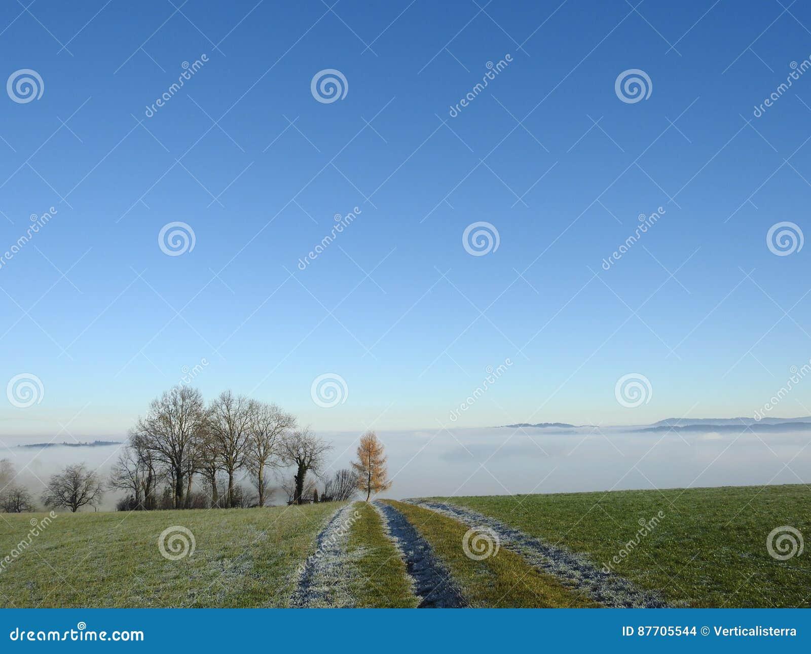 Le chemin congelé mène à la mer du nuage