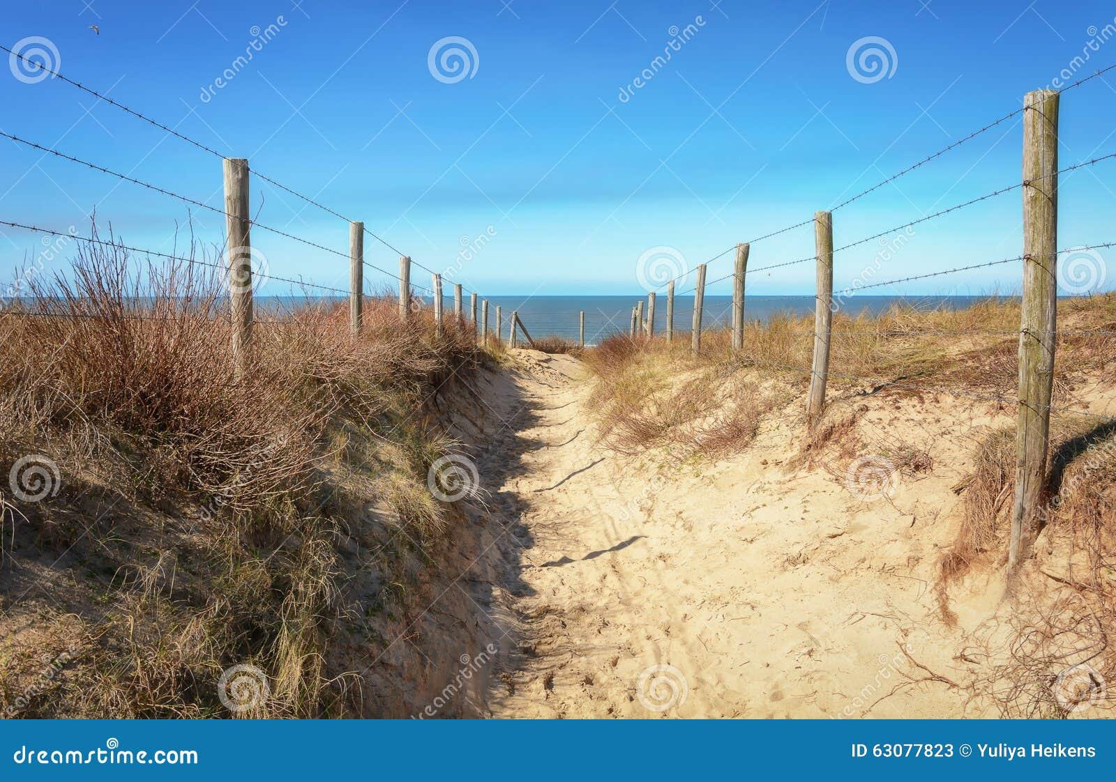 Download Le chemin vers la mer image stock. Image du ciel, repères - 63077823