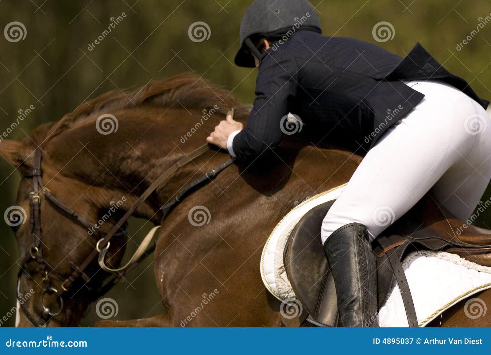 Le cheval sautant 010