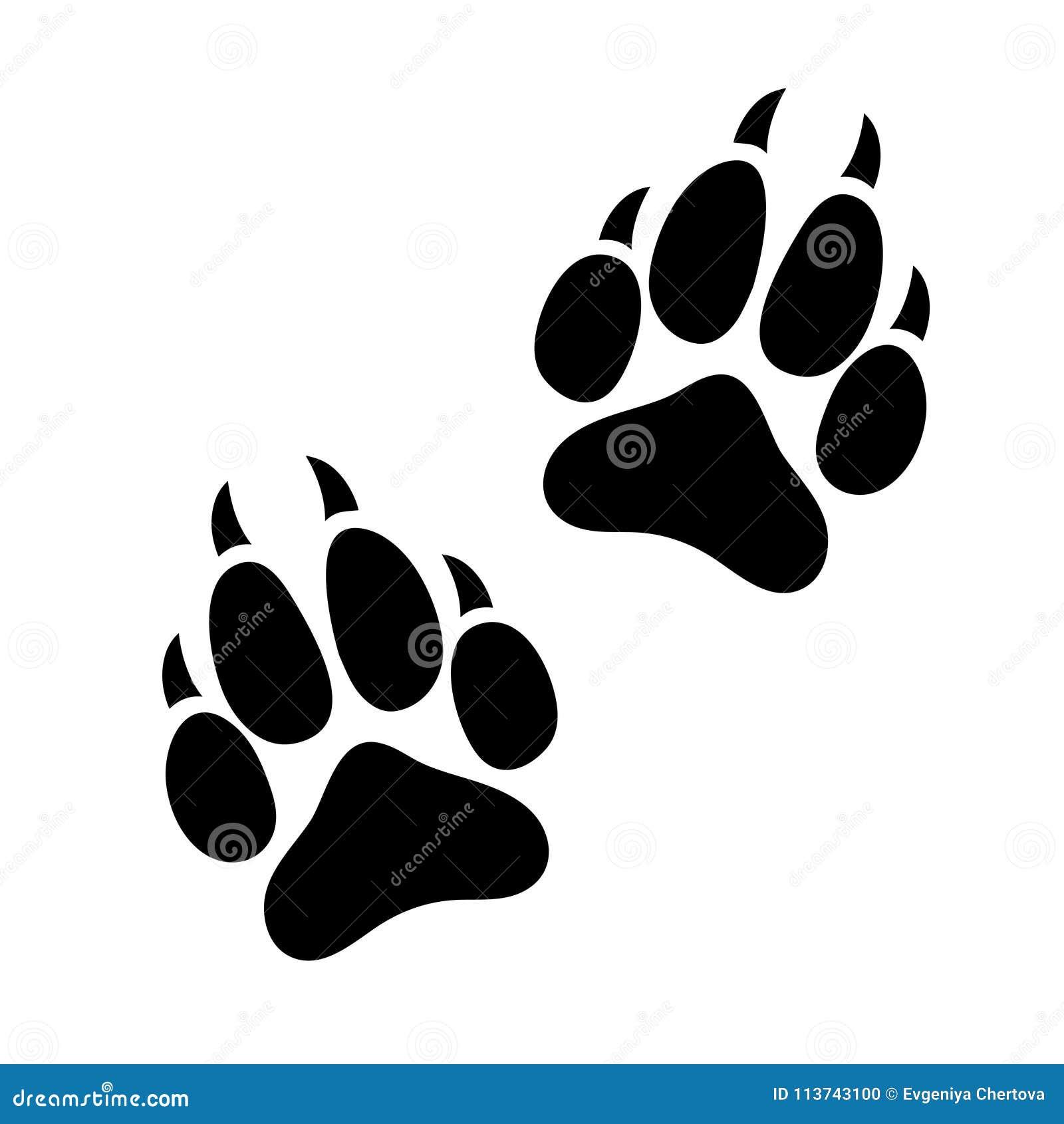 Le Chien Ou Le Chat Animal Dimpression De Patte A Griffé