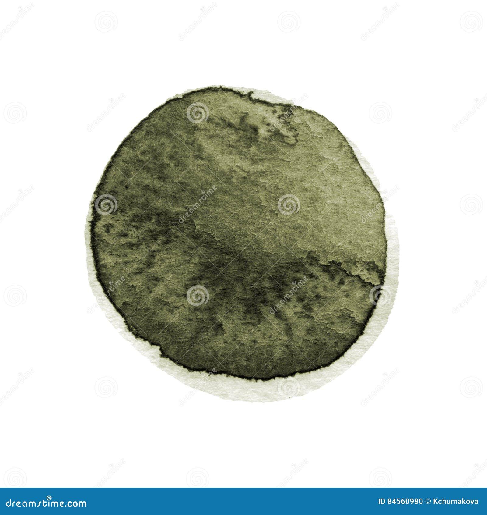 Le chou frisé et l aquarelle ronde vert-foncé balayent la course d isolement sur le fond blanc L aquarelle souille la texture Cir