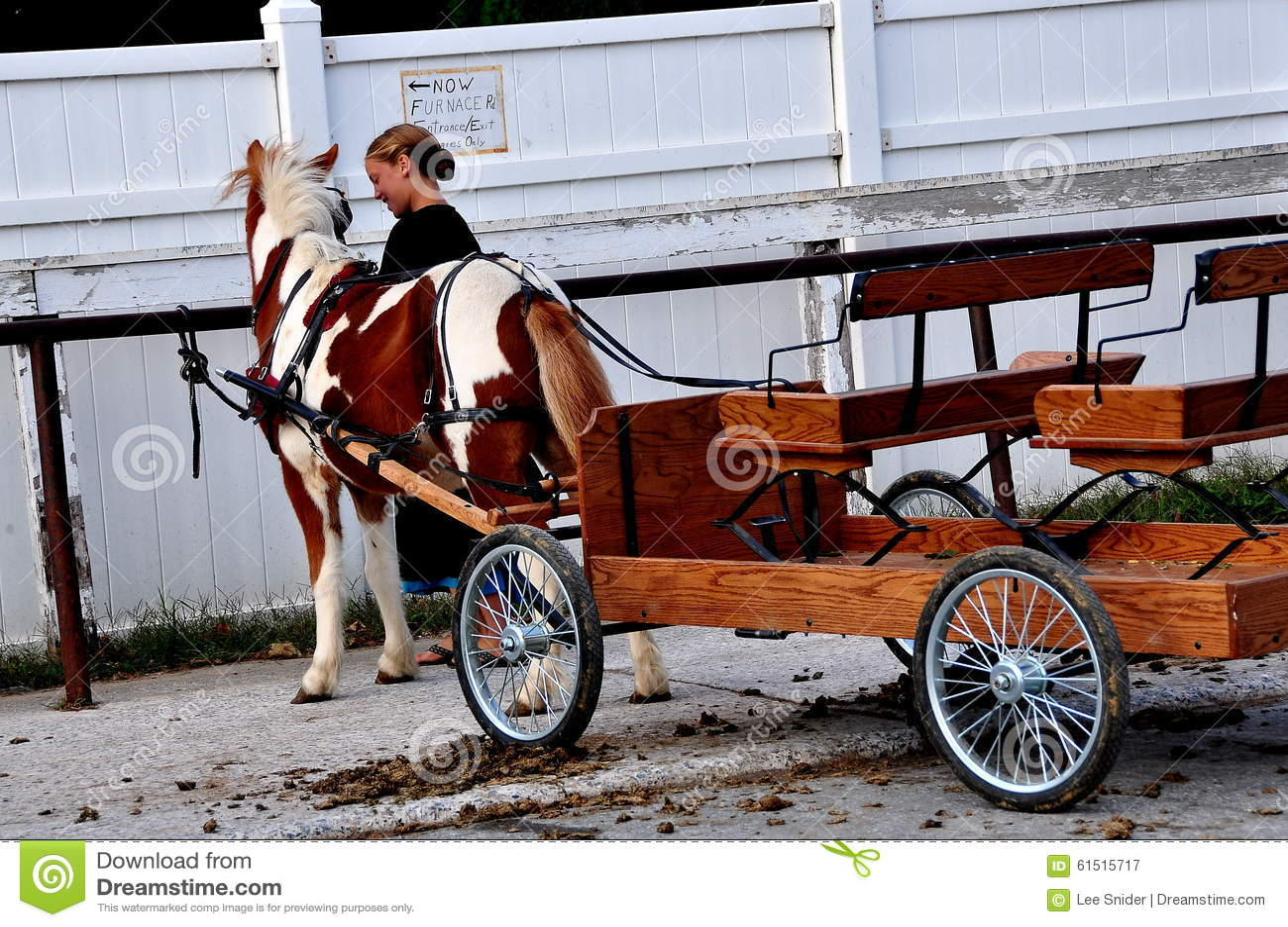 Le comté de Lancaster, PA : Fille amish avec Pony Cart