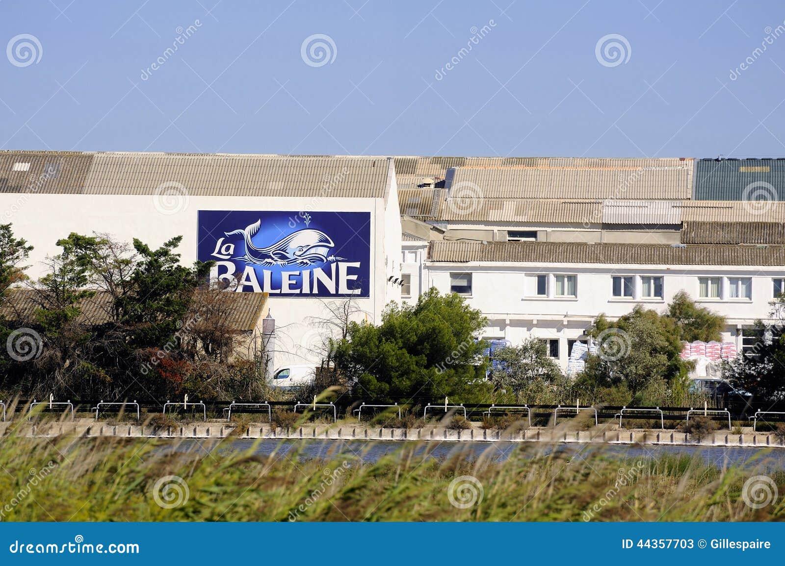 Le costruzioni dell impresa industriale Aigues-Mortes salino