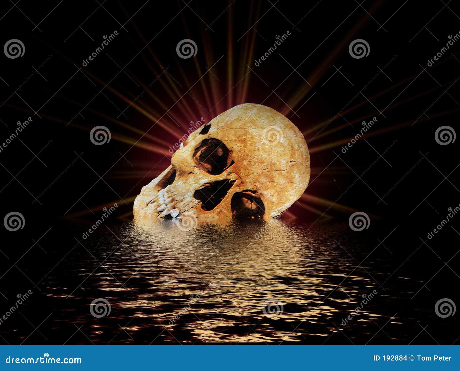 Le crâne II