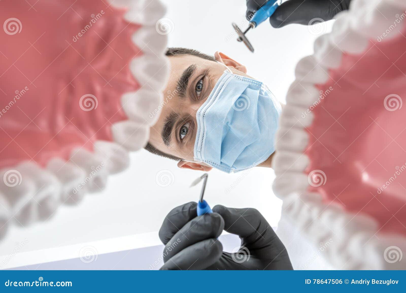 Le dentiste regarde par des modèles de mâchoire