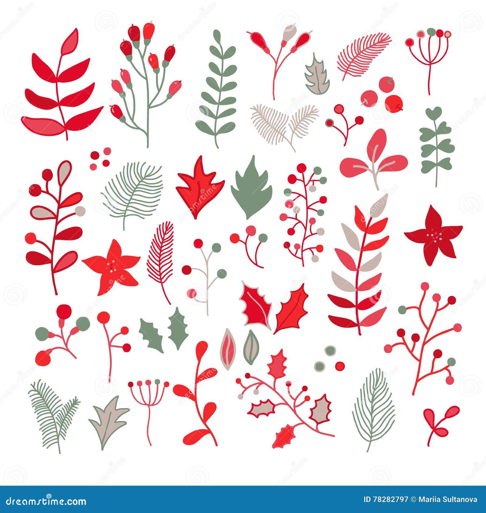 Le Dessin Floral De Vecteur De Noël A Placé Avec Le Houx