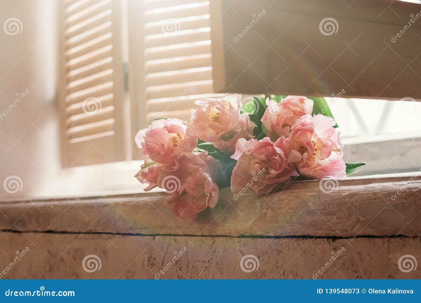 Le Doux A Concentré Les Fleurs Roses Sur Le Filon Couche De Fenêtre