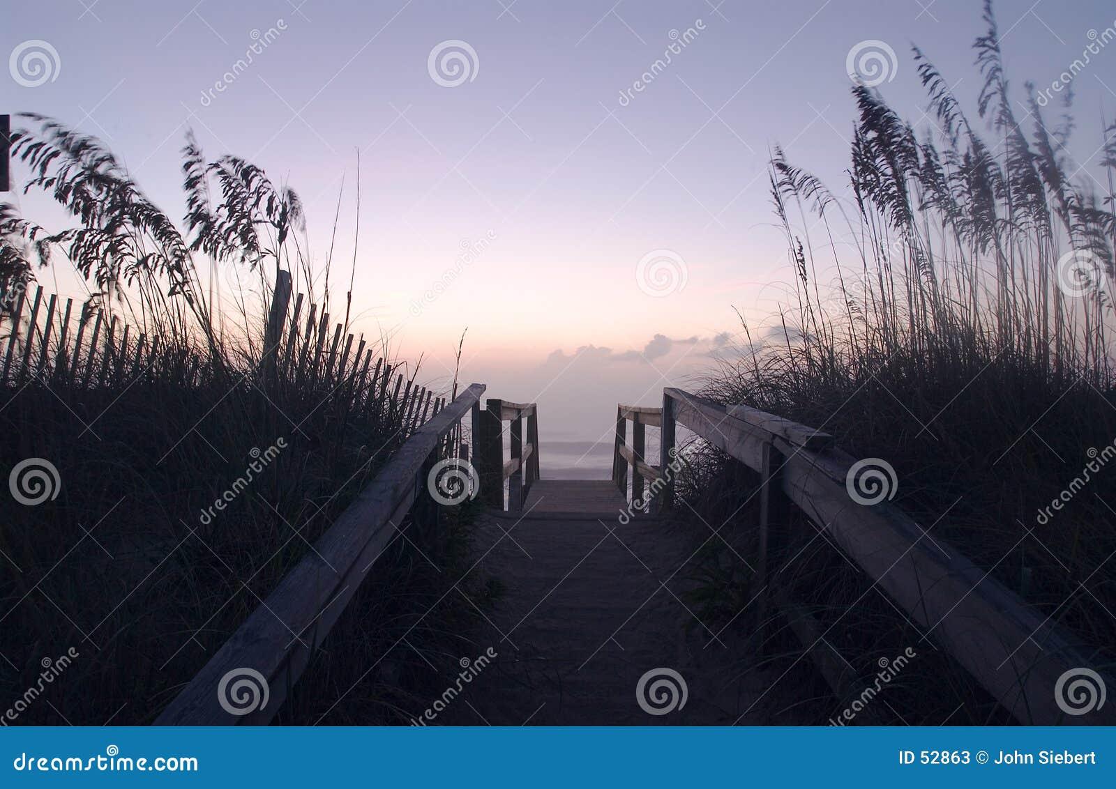 Le dune #1 del puntello