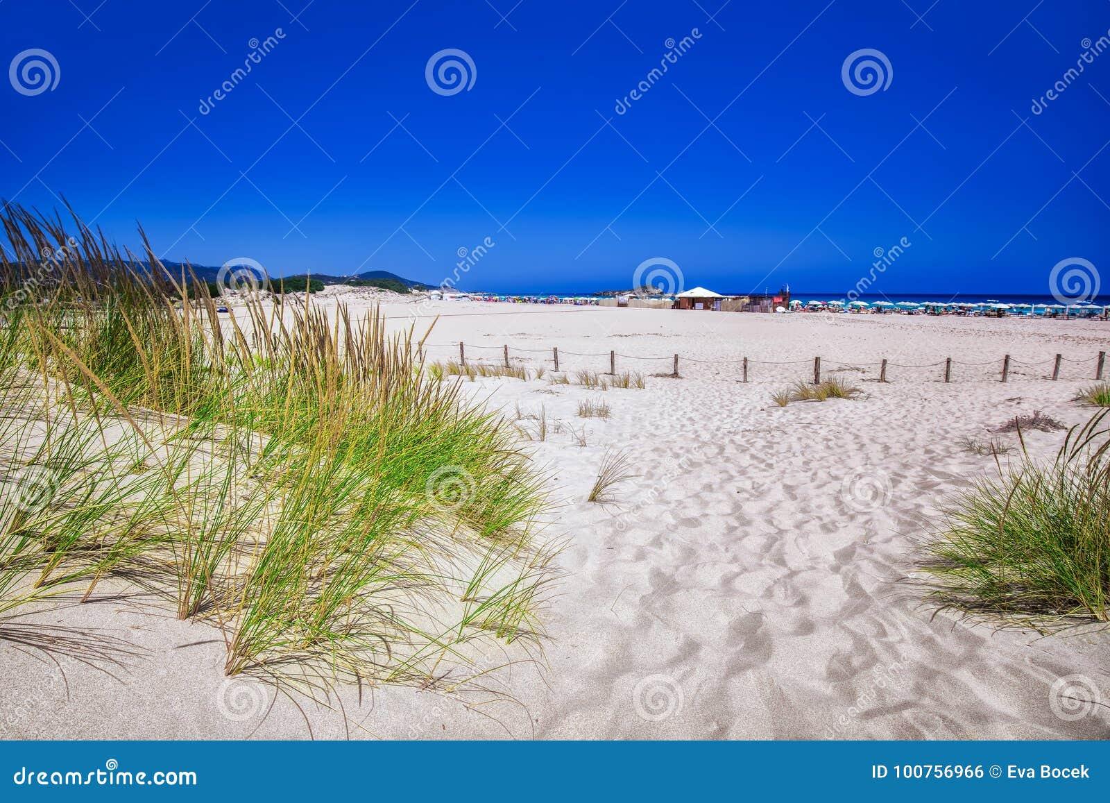 Le Dune Di Sabbia Bianche Sull\'Unione Sovietica Giudeu Tirano ...